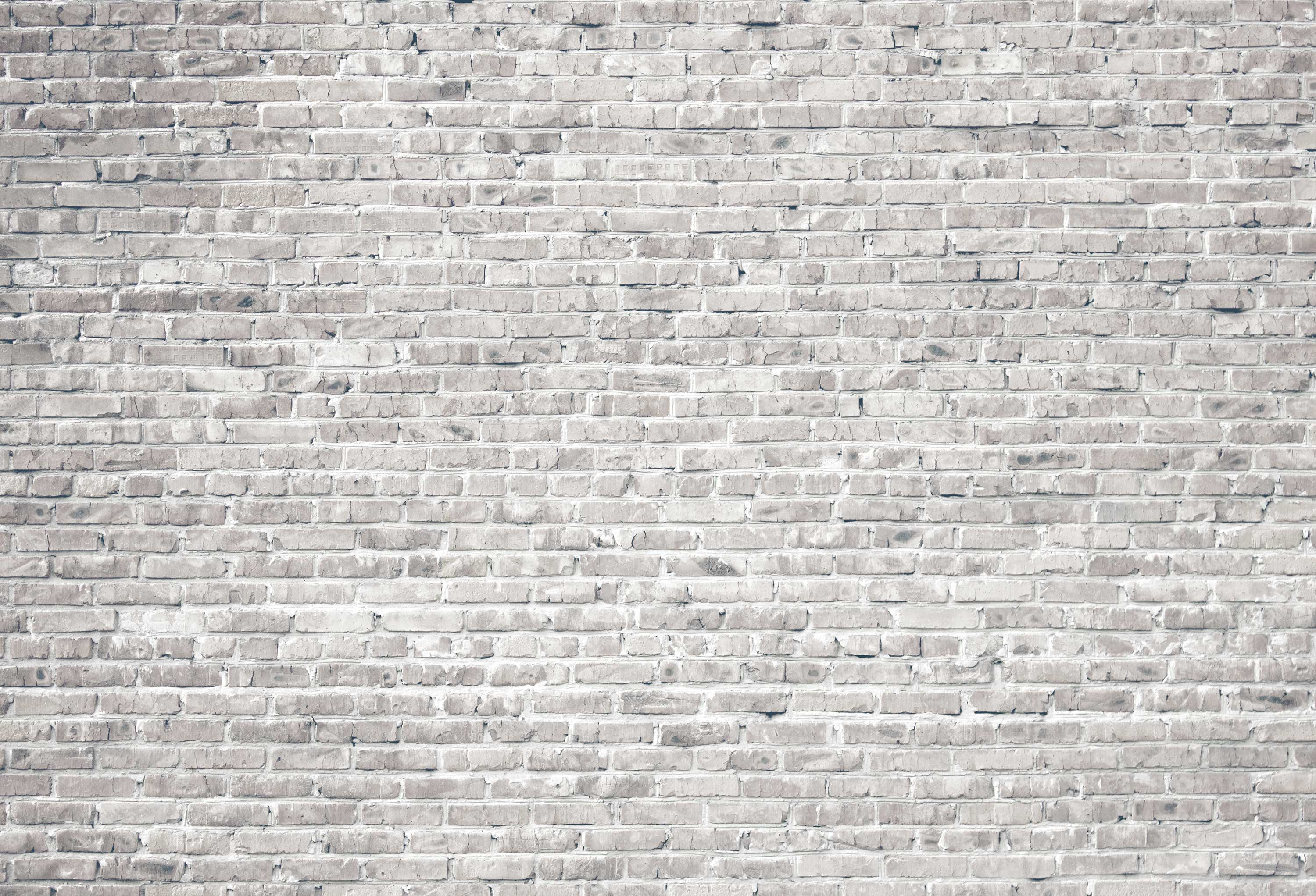 White grunge basic brick wall - 155641904 - Decomurale inc.