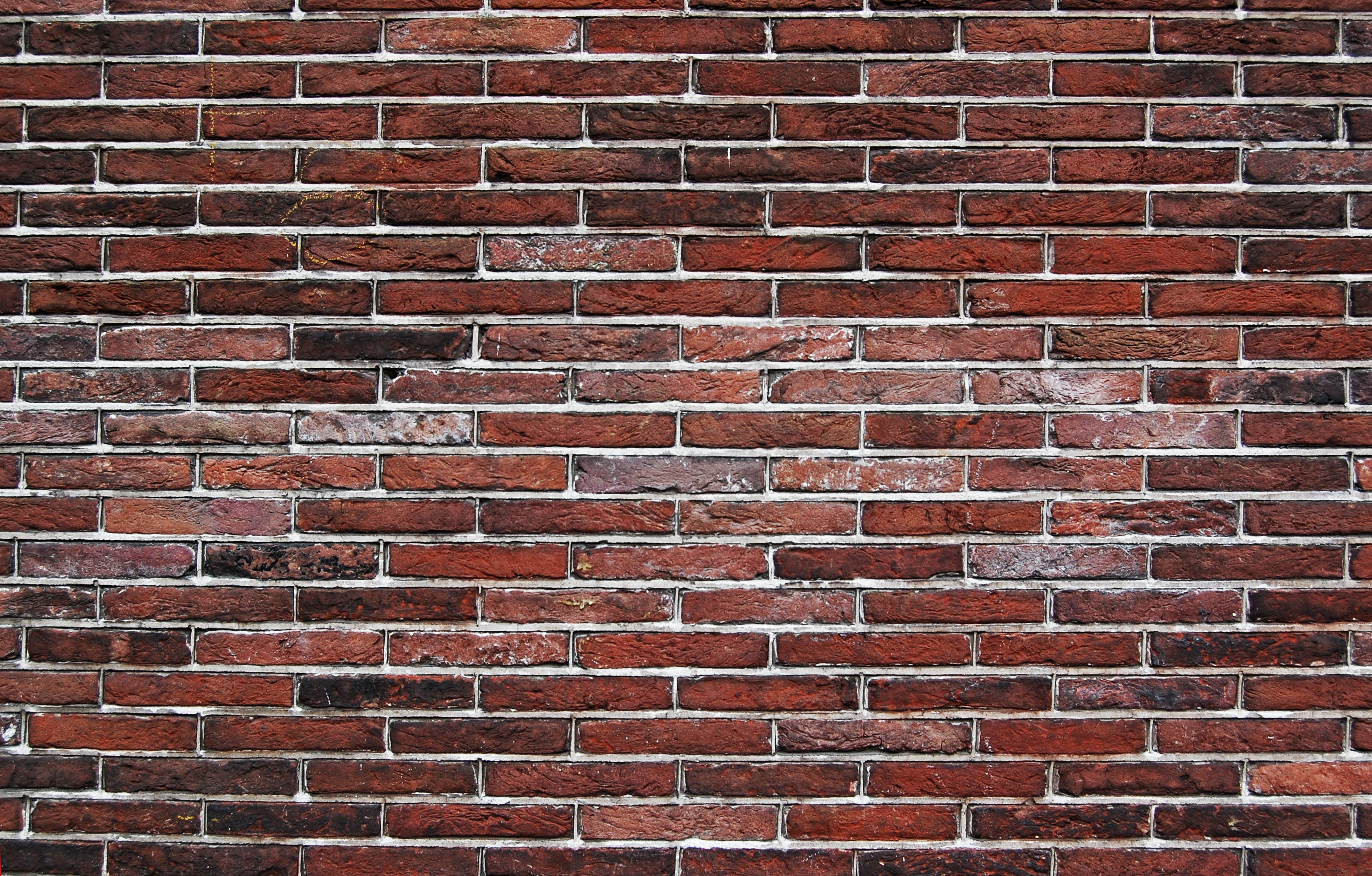 Cliff Notes For Brick Wall Syndrome | Thoughts On Plot