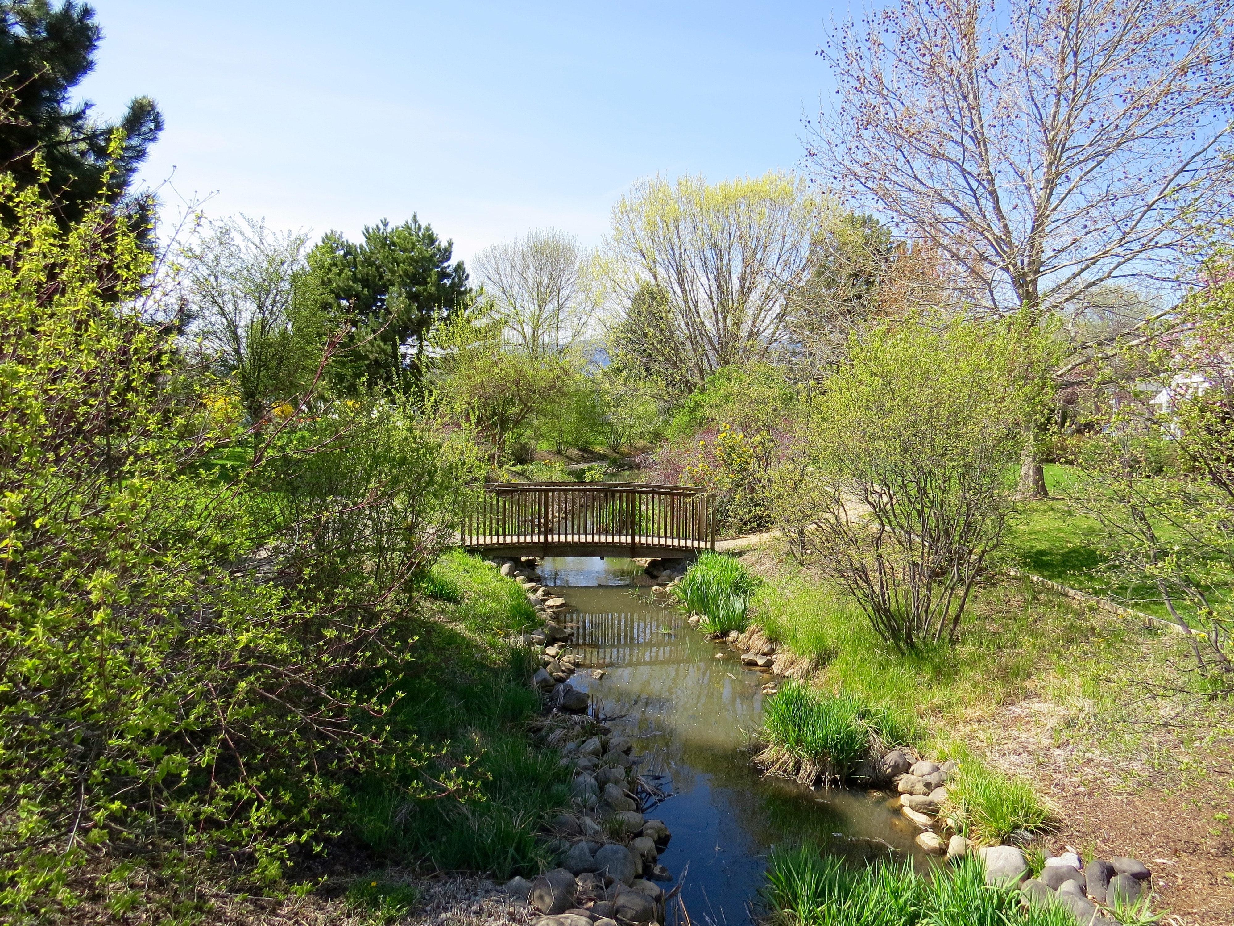 Bridge over body of water surround by greenery photo