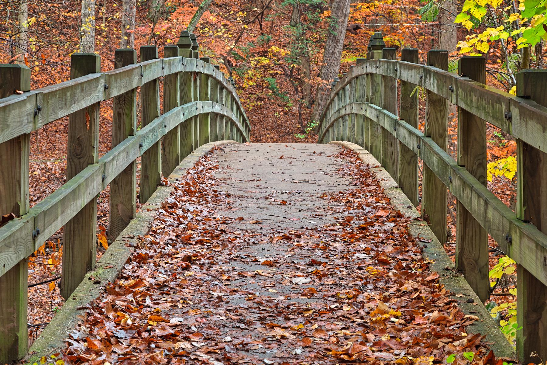 Bridge to fall - hdr photo