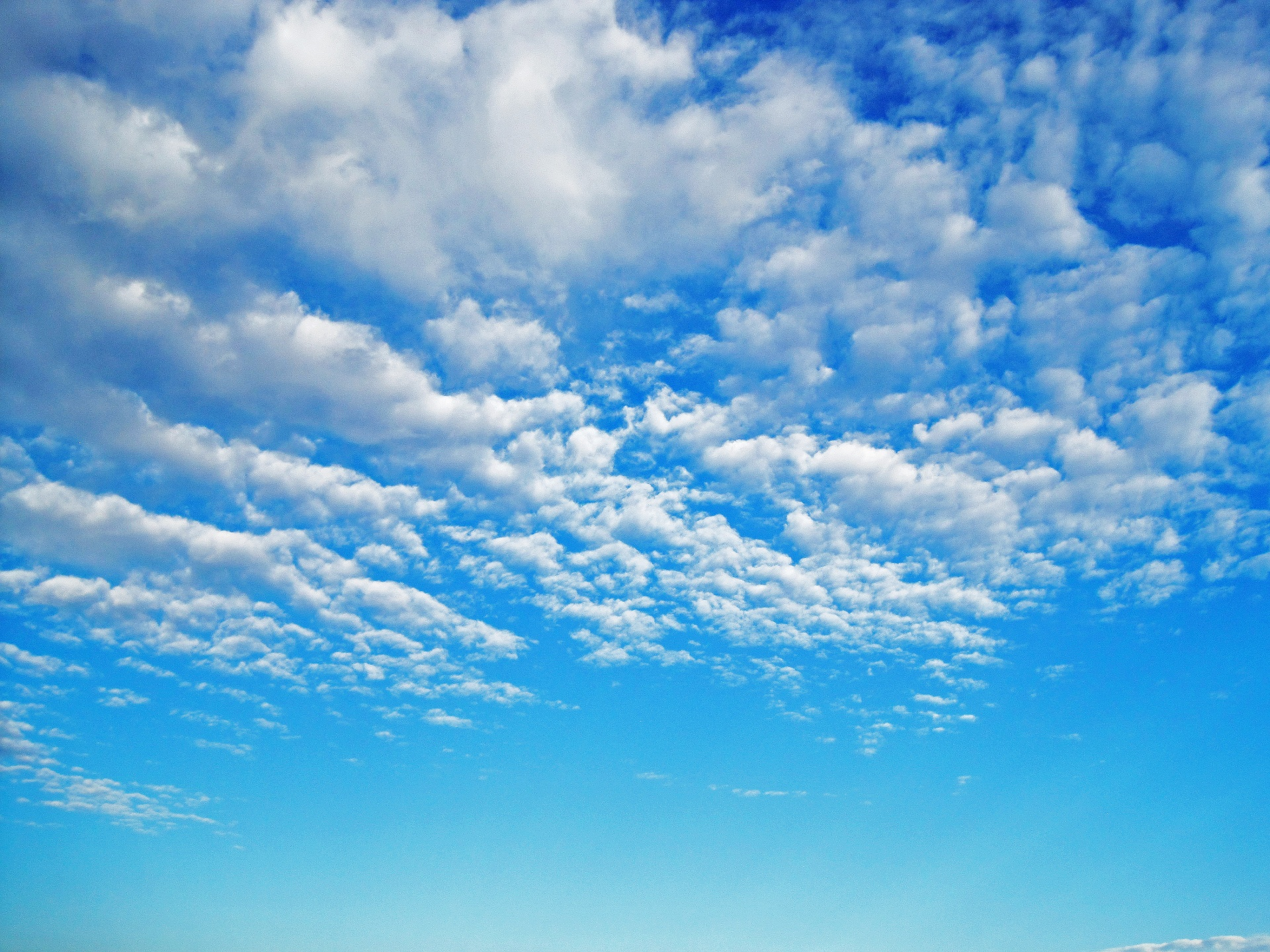 Bright Blue Sky With White Clouds Free Stock Photo - Public Domain ...