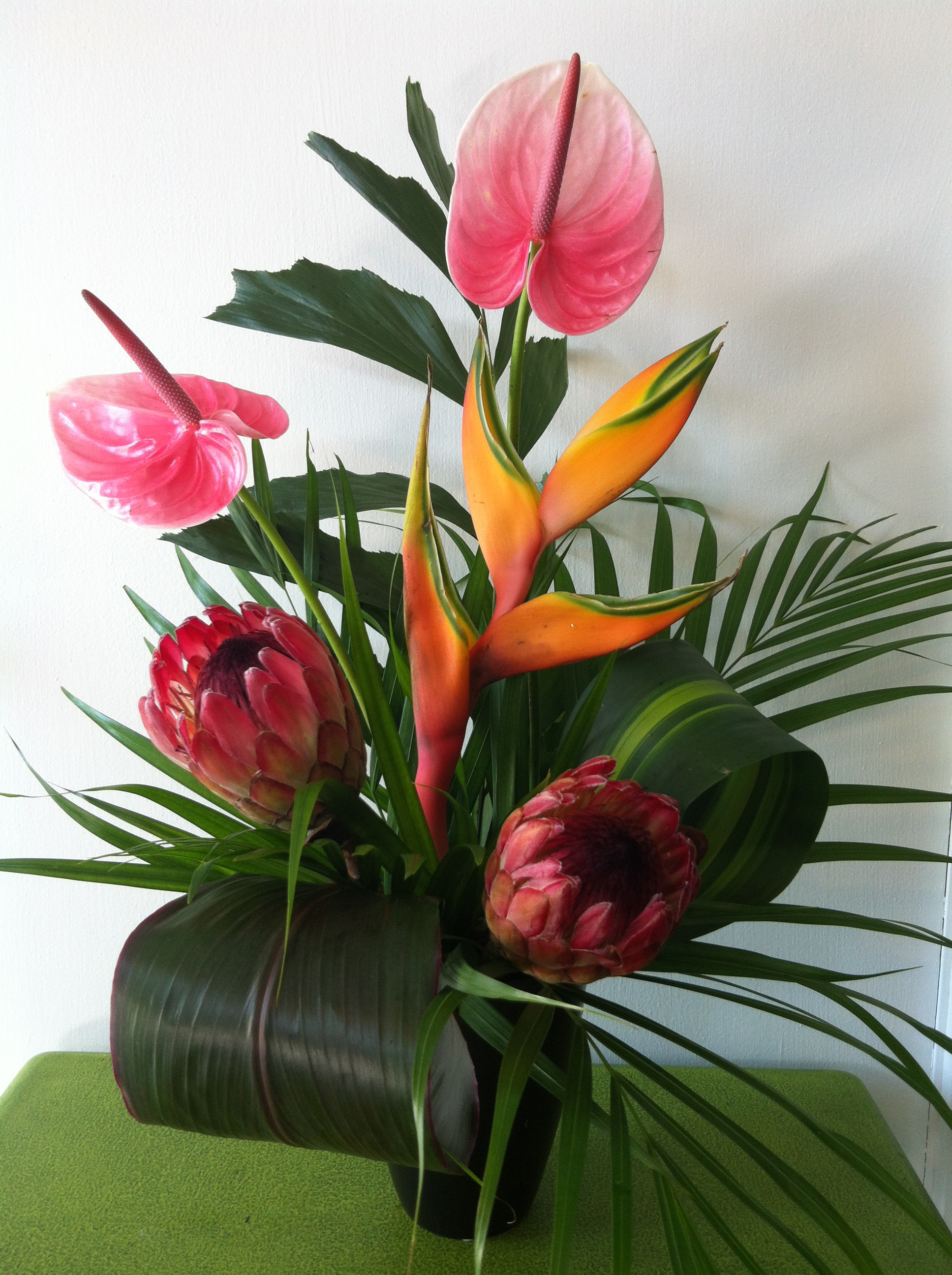 tropical flowers | jblooms