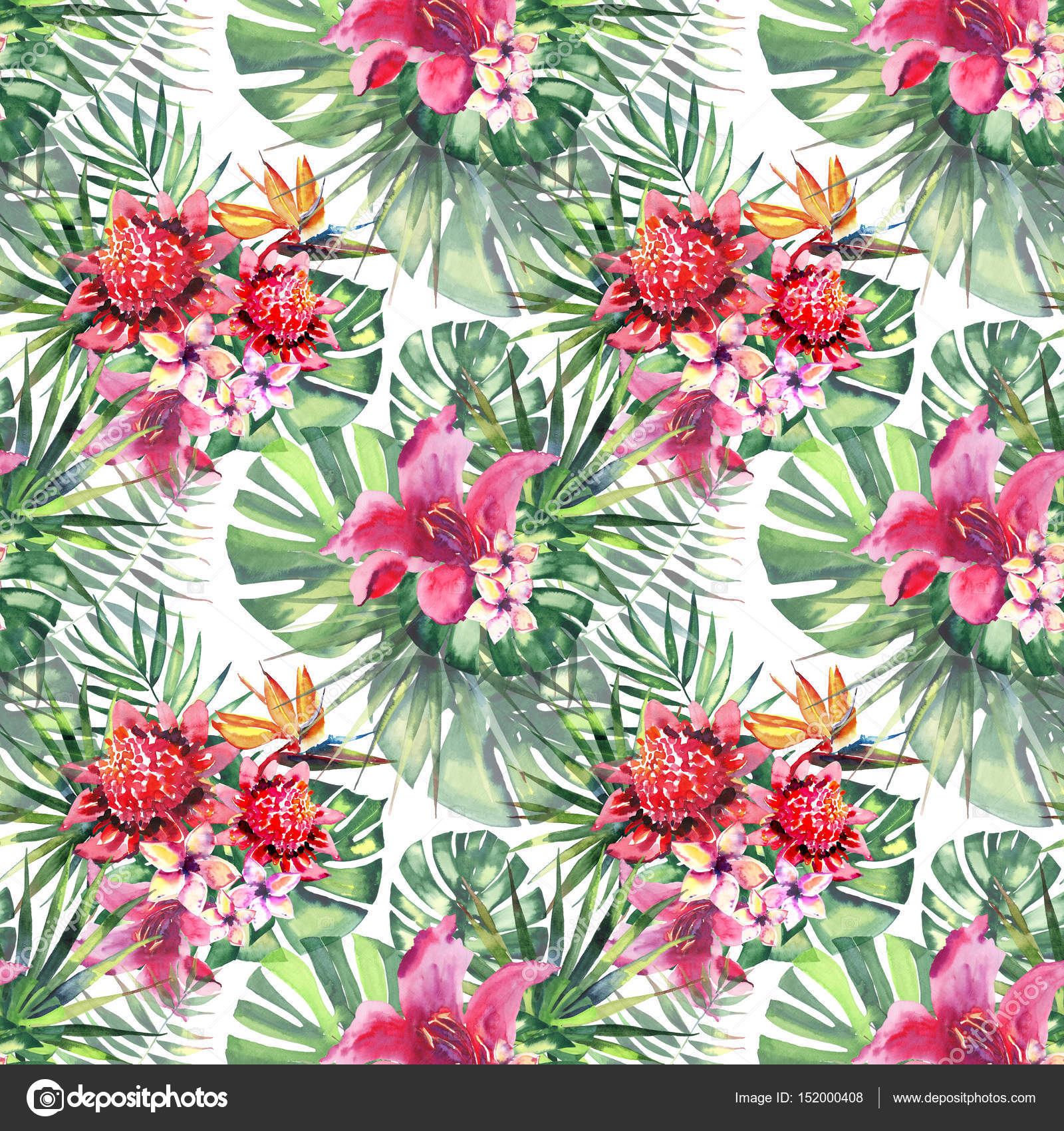Beautiful bright lovely colorful tropical hawaii floral herbal ...