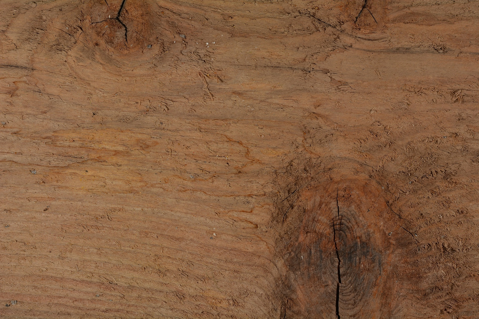 Brown, Fuel, Texture, Timber, Wood, HQ Photo