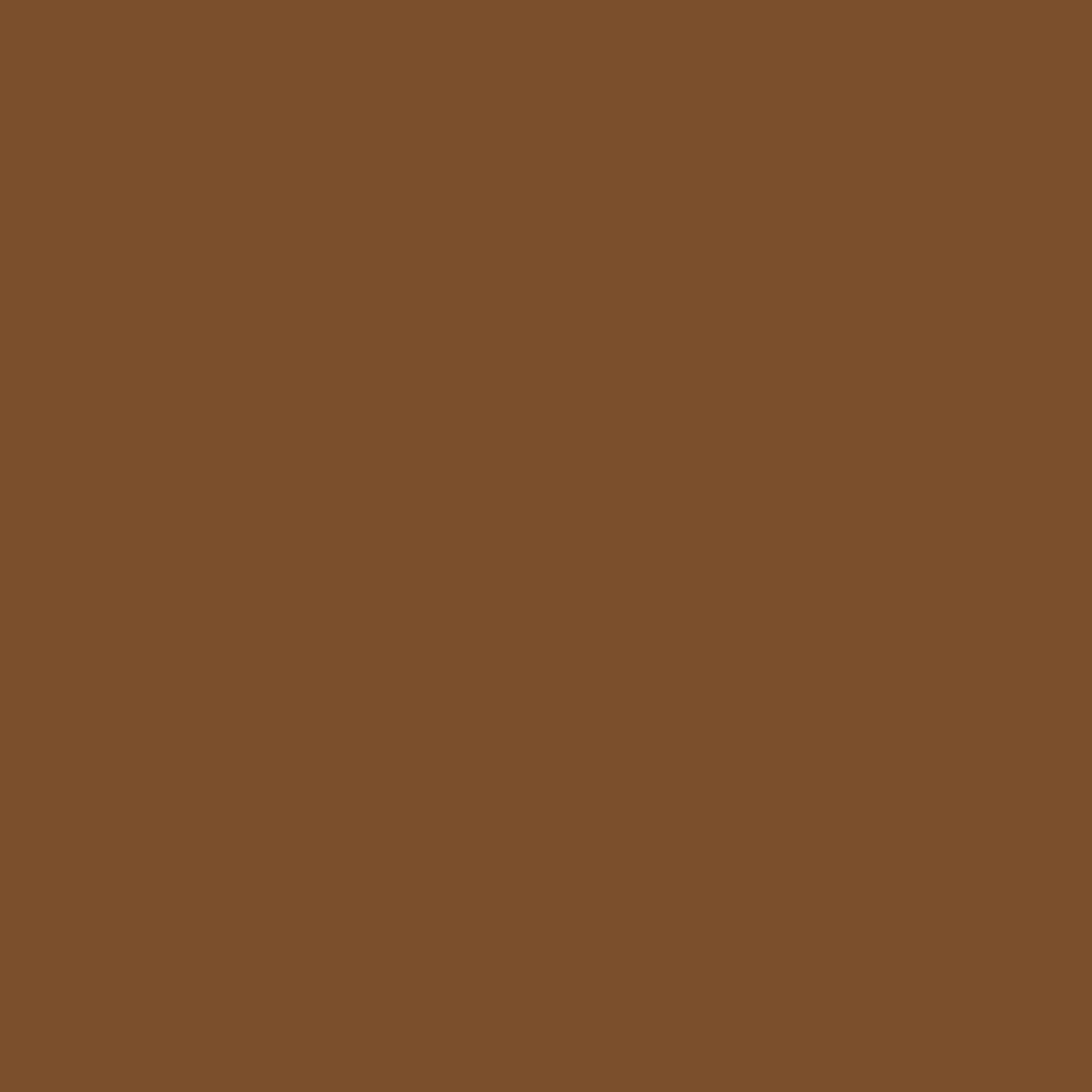 File:Solid brown.svg - Wikimedia Commons