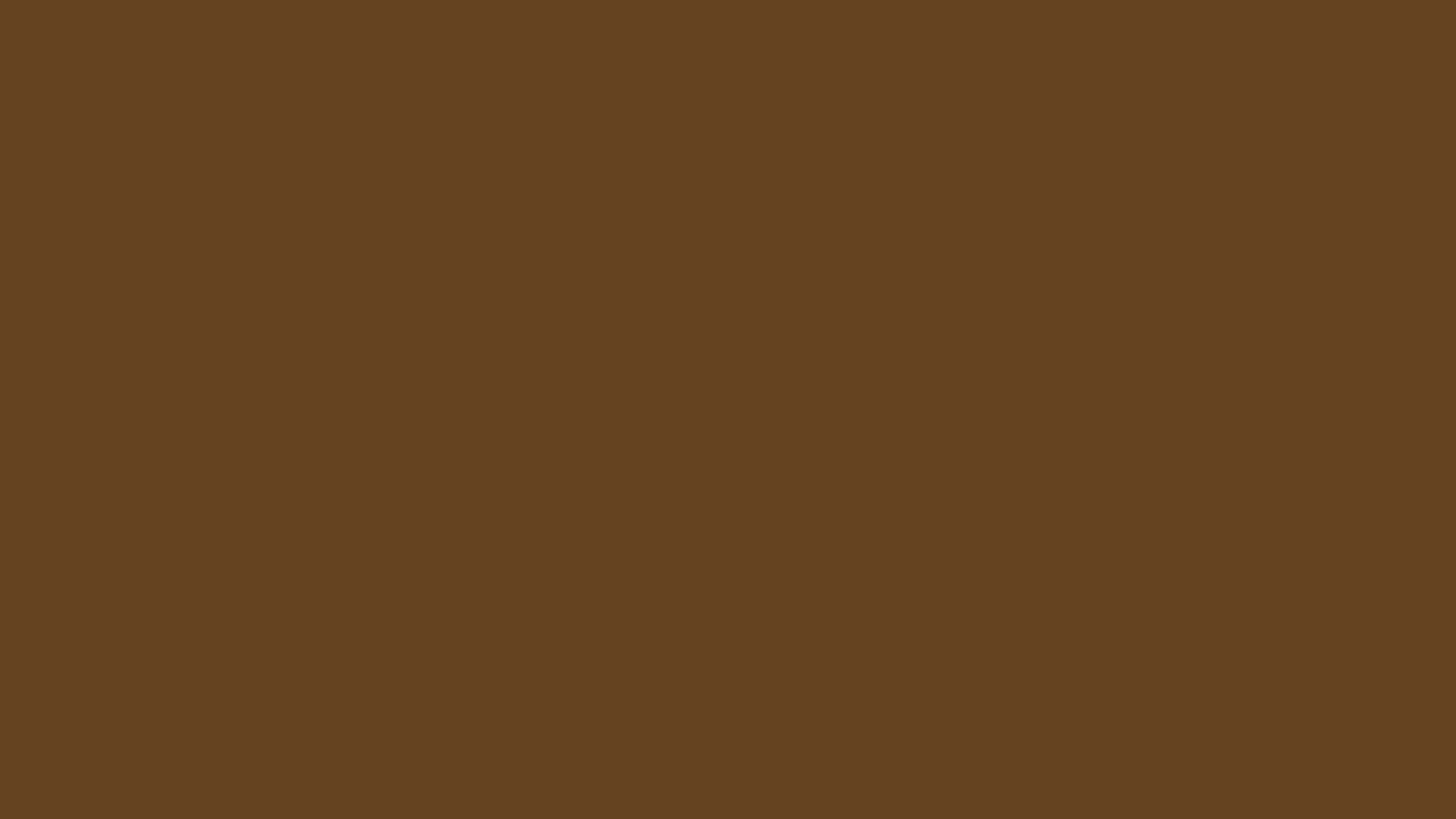 2560x1440 Dark Brown Solid Color Background