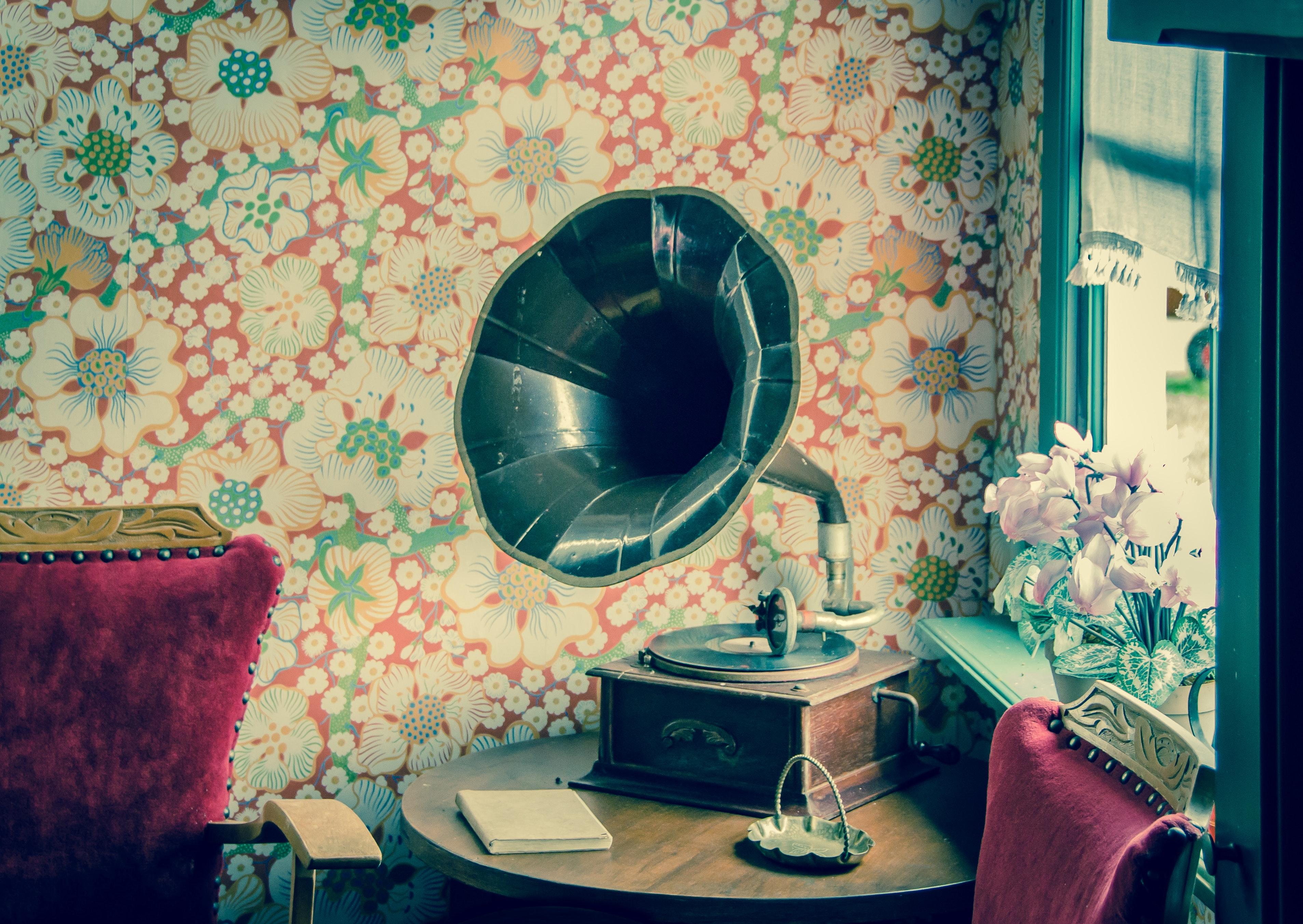 Brown and black gramophone photo