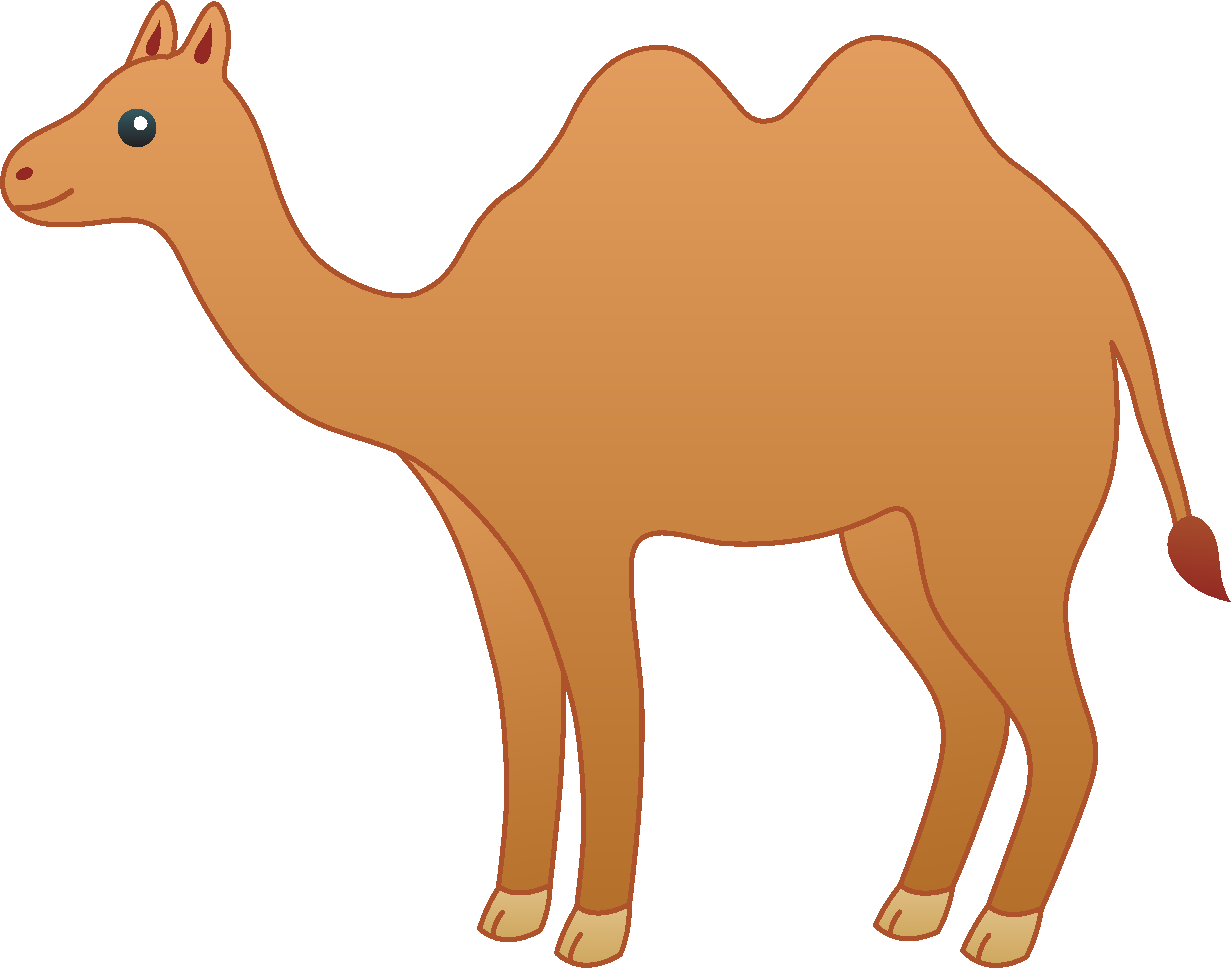 Brown camel photo