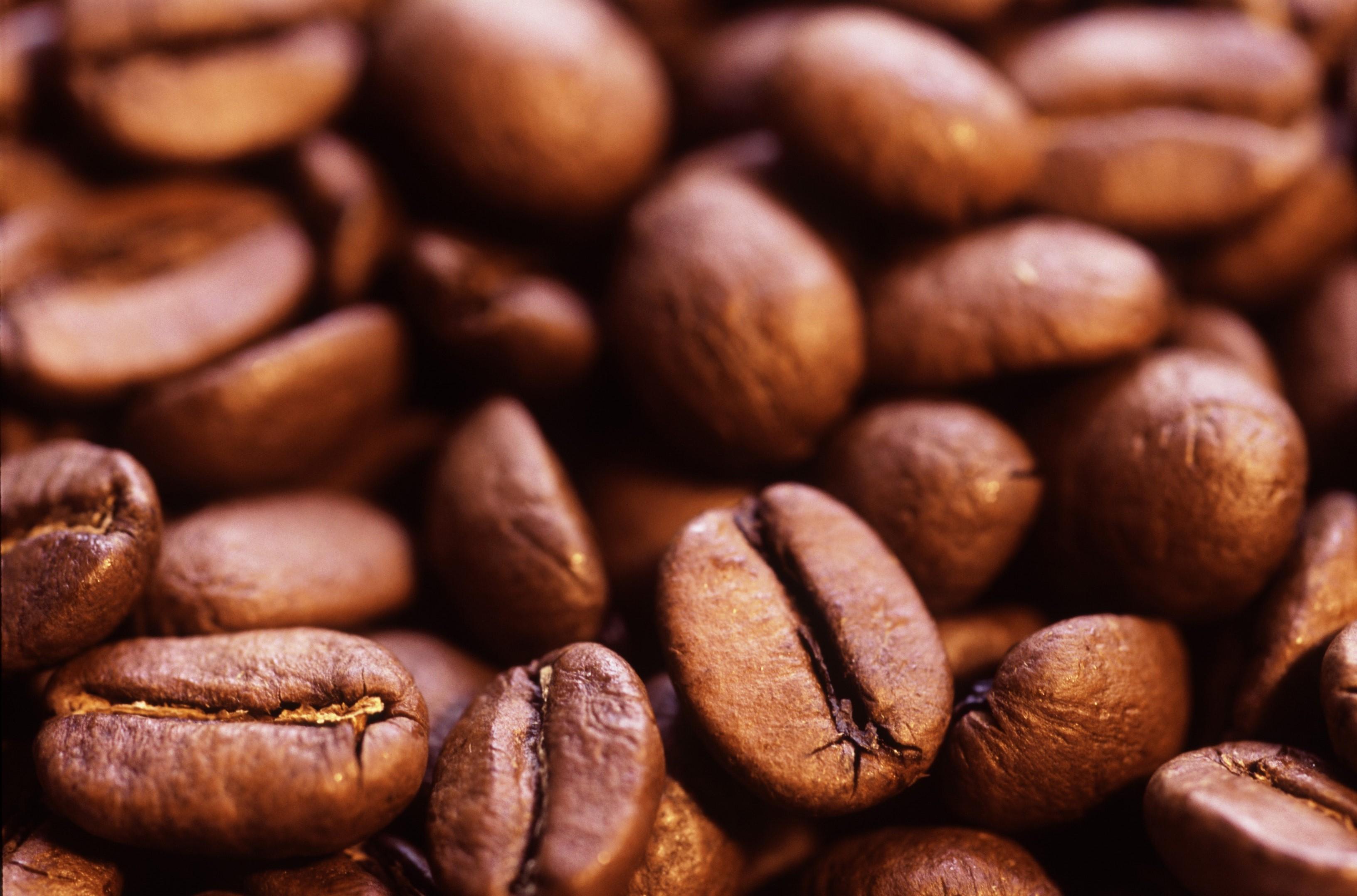 Free Stock photo of Roasted coffee beans | Stockmedia.cc