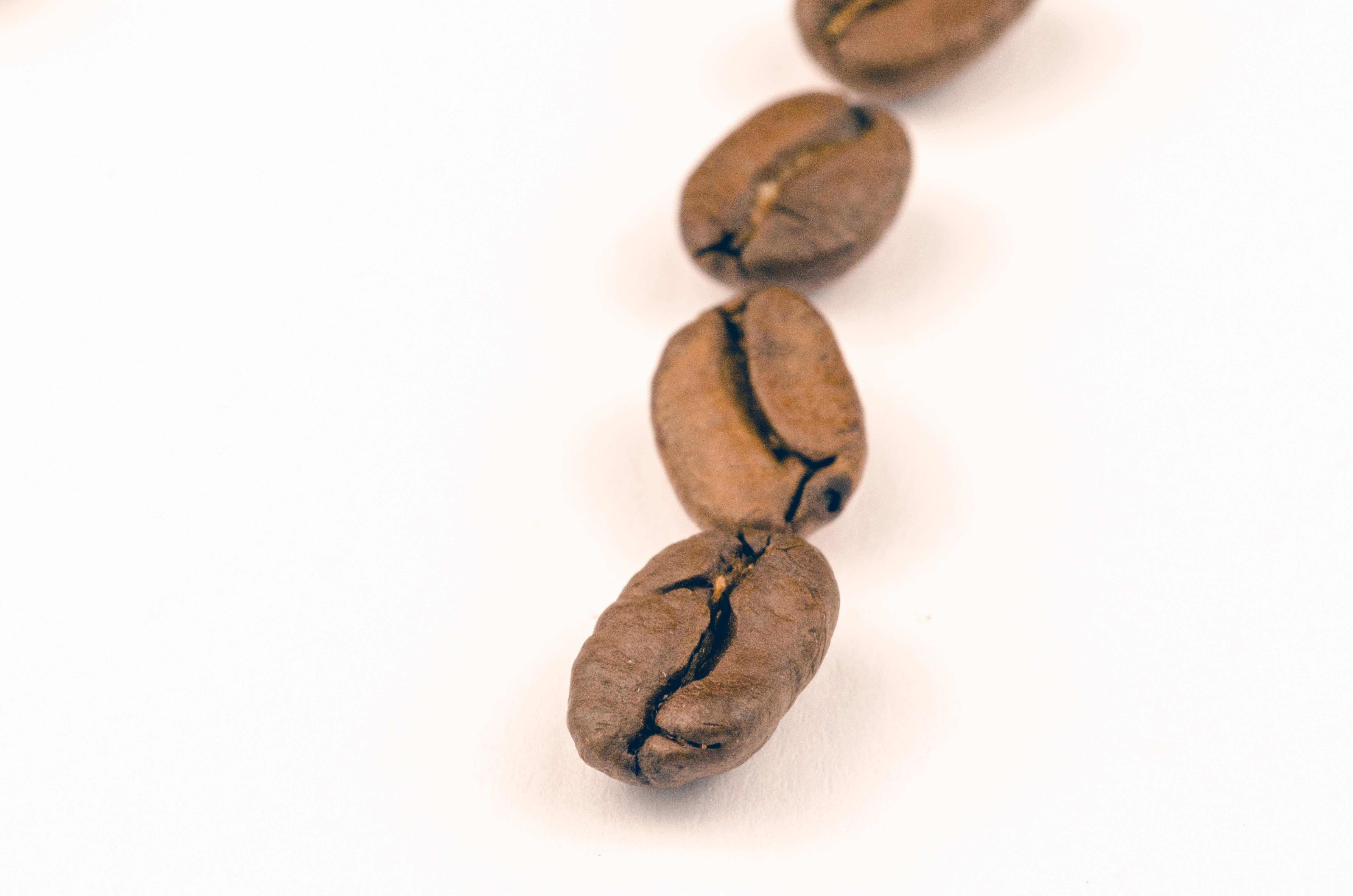 Brown Coffee Beans, Macro photography, Little, Raw, Seeds, HQ Photo