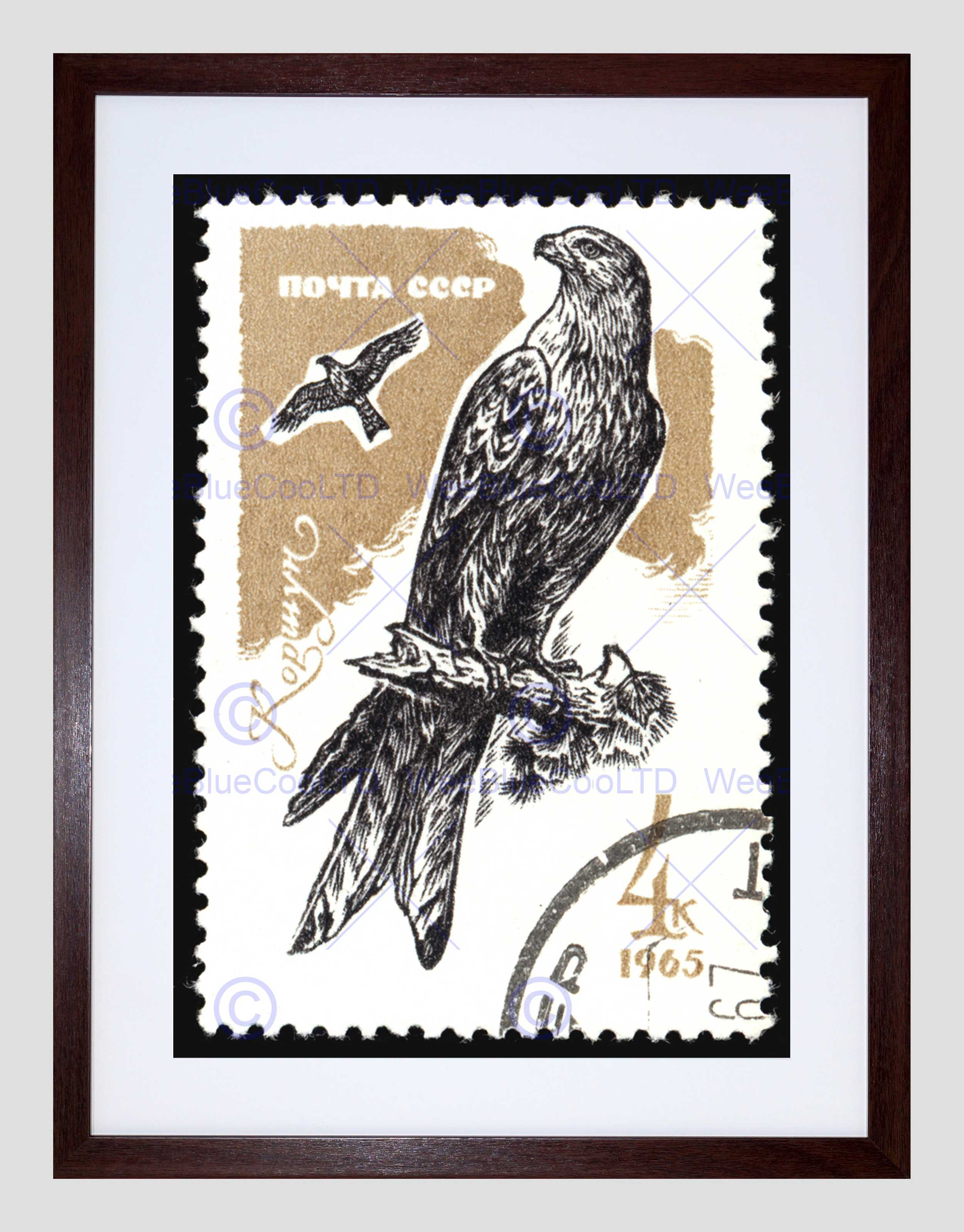 Postage USSR Soviet Stamp 1965 Falcon Bird Prey Framed Art Print ...