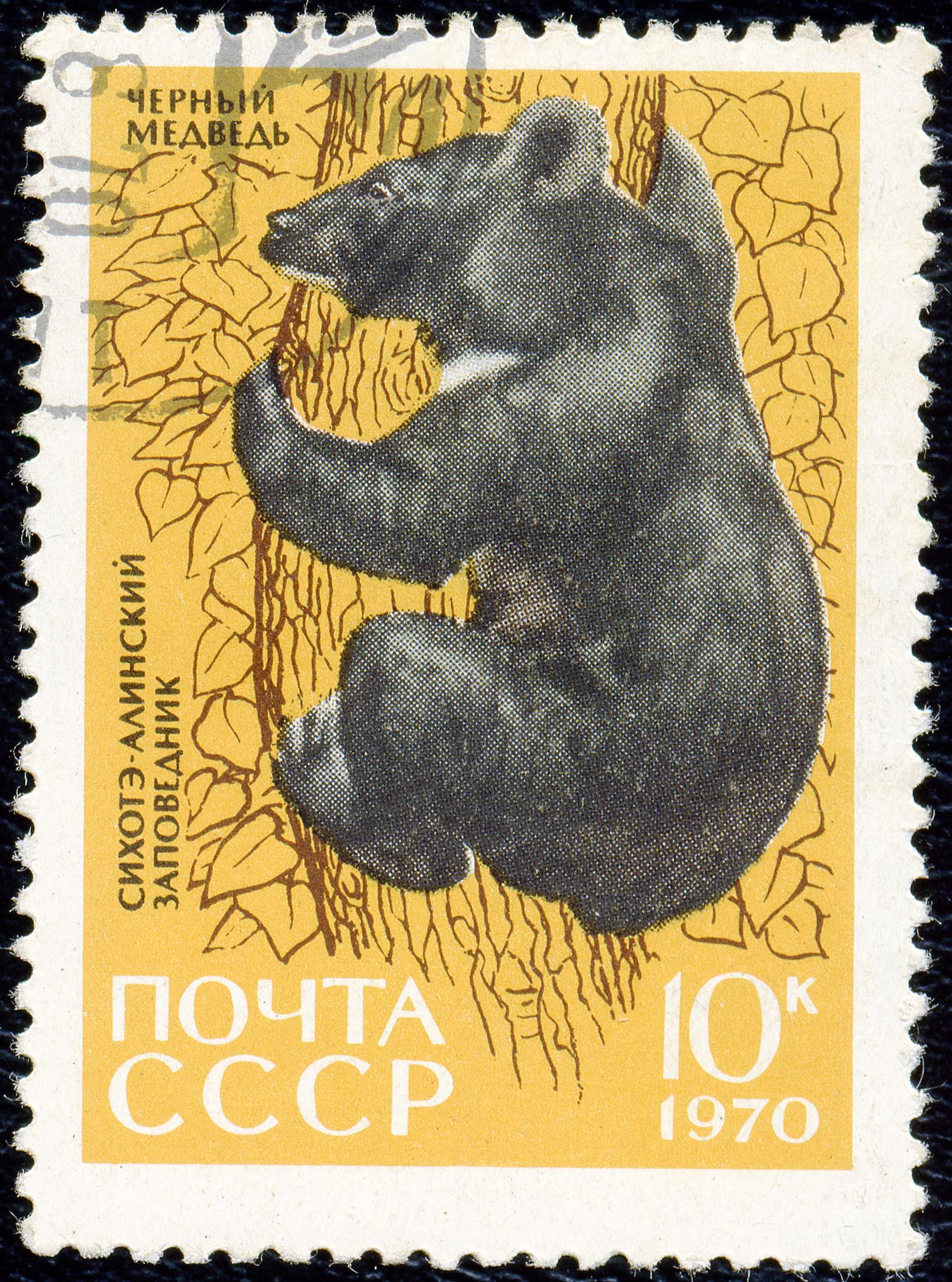 1970 Russian stamp. Yellow, brown, black, white and bear. | post ...