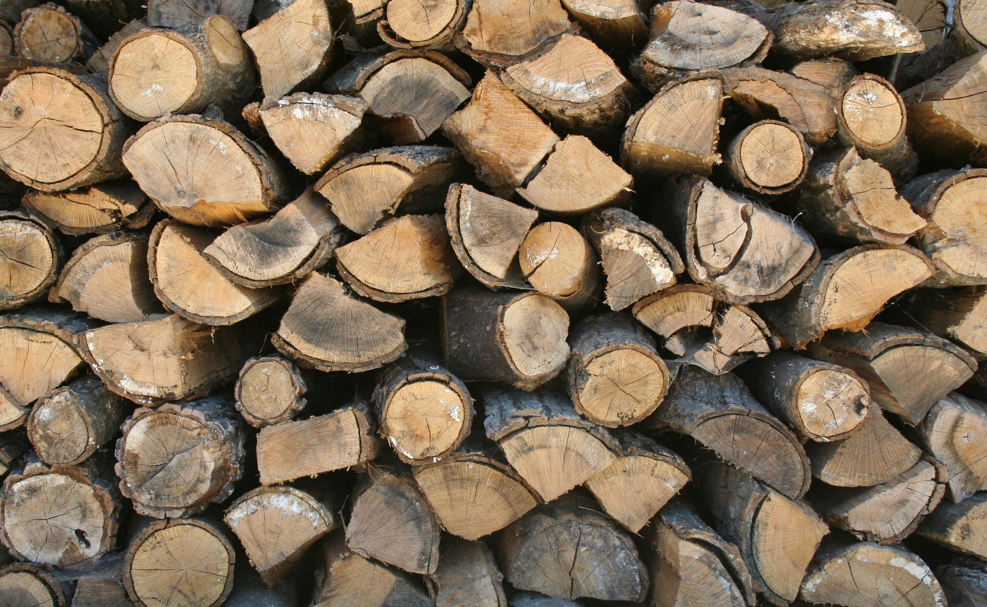 File:Stack of firewood.jpg - Wikimedia Commons