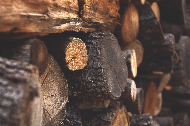 Brown Firewood, Nature, Macro, Trunk, Wood, HQ Photo