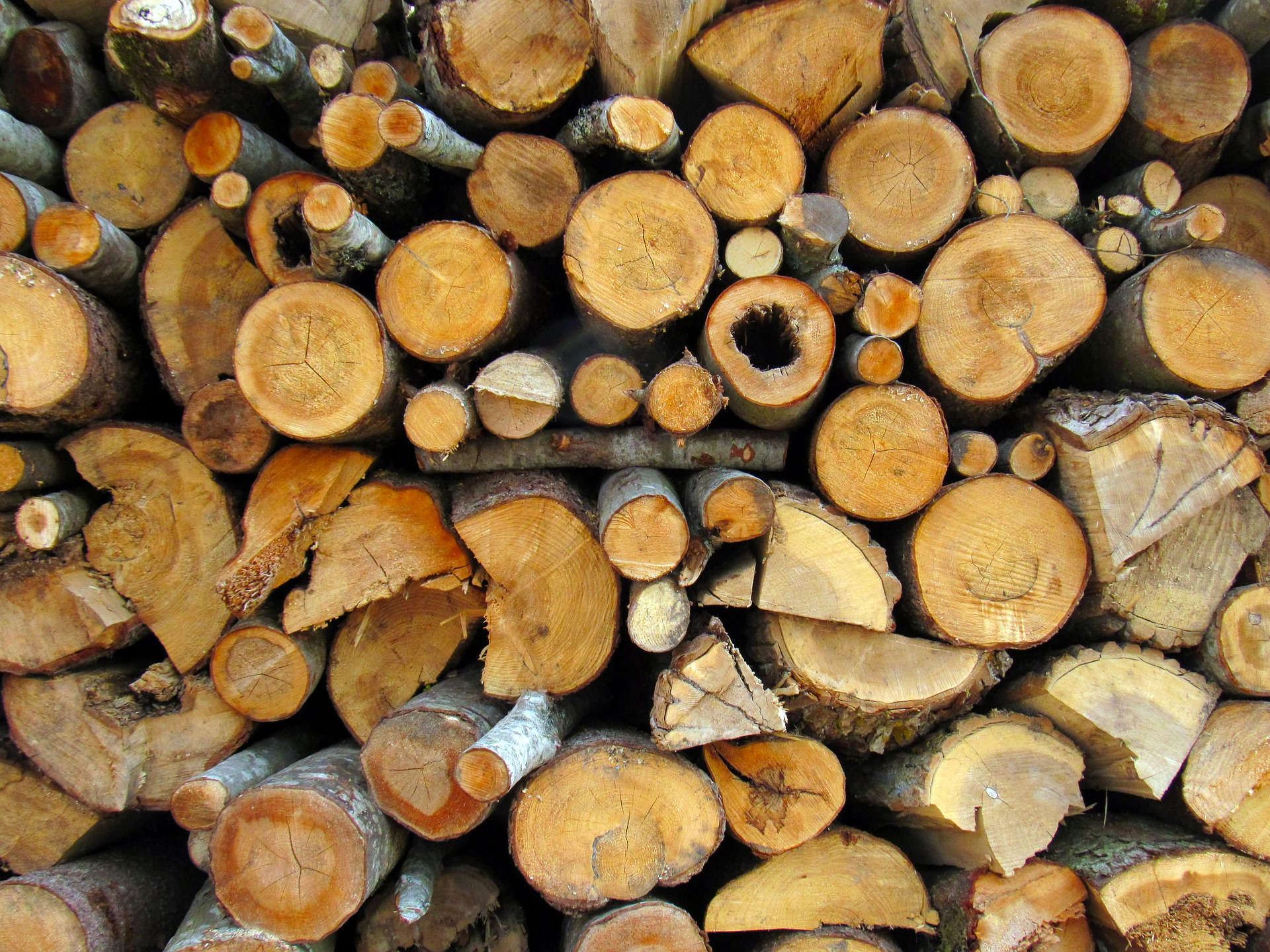 Firewood: Tips to Cut, Split, Stack, Storing and Using It Well ...