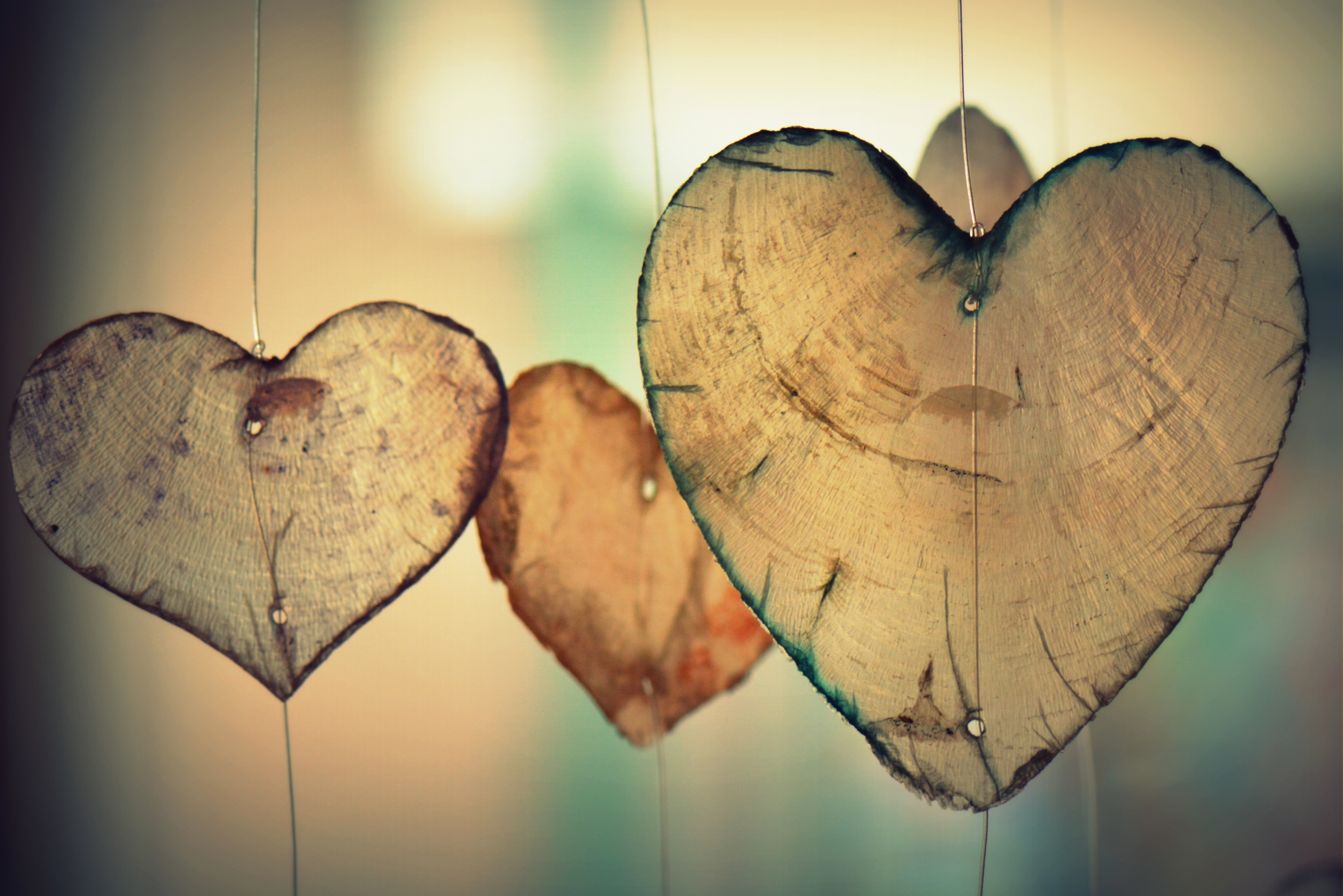 Brown Heart Shaped Hanging Decor, Valentine, Romantic, Romance, Heart, HQ Photo
