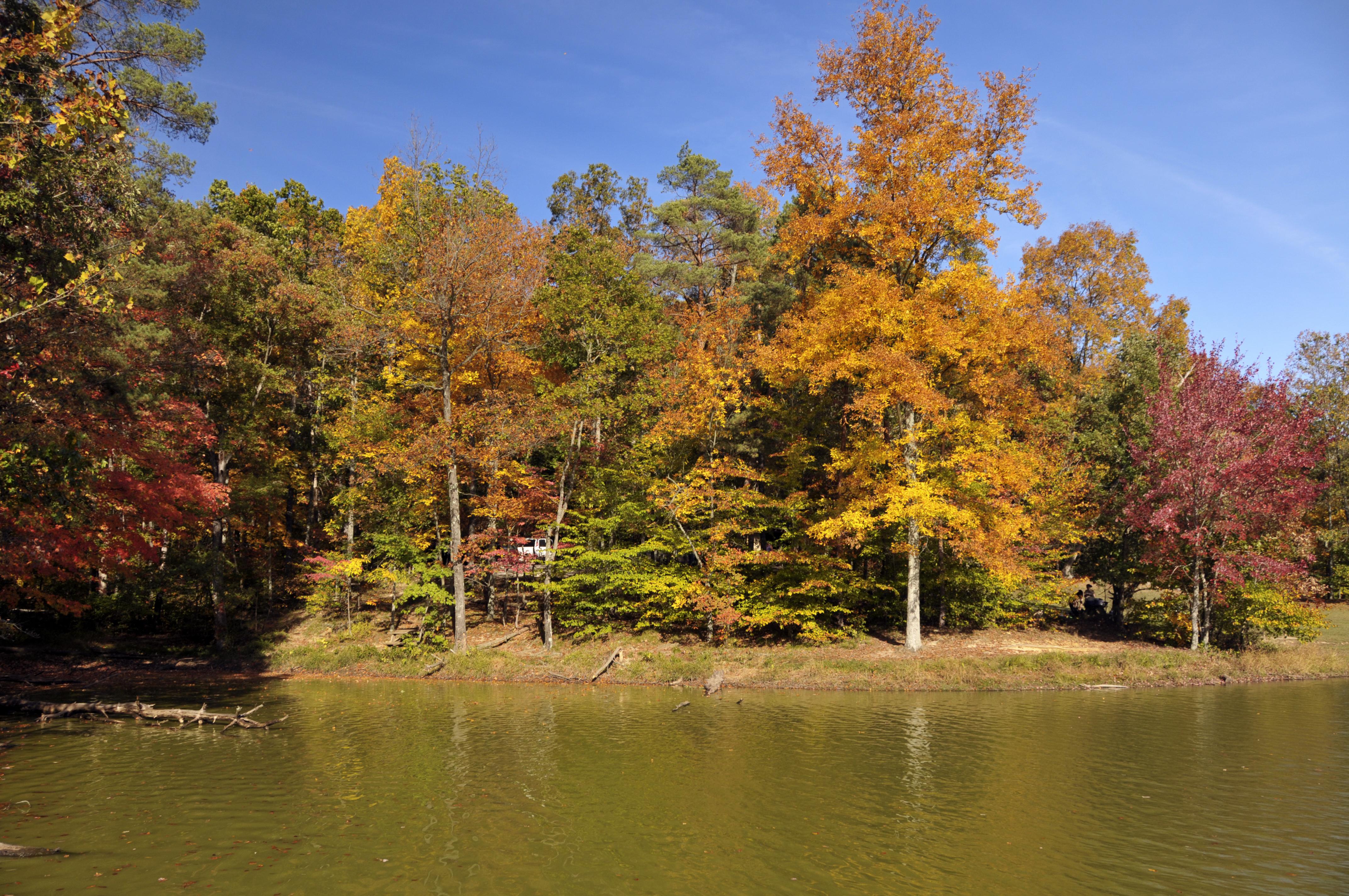 File:Brown County Lake, Indiana (2982445255).jpg - Wikimedia Commons