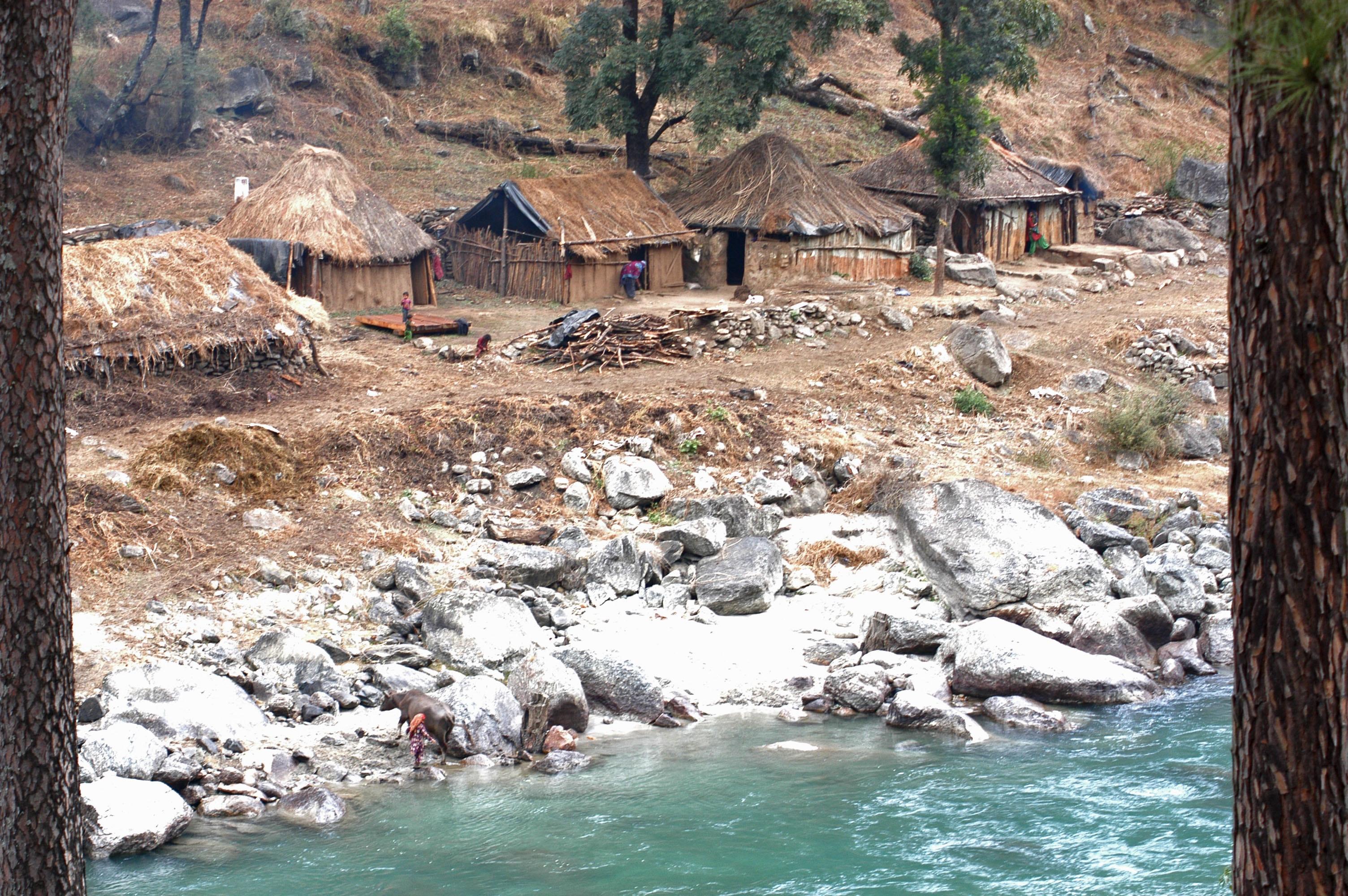 Brown nipa houses beside river photo