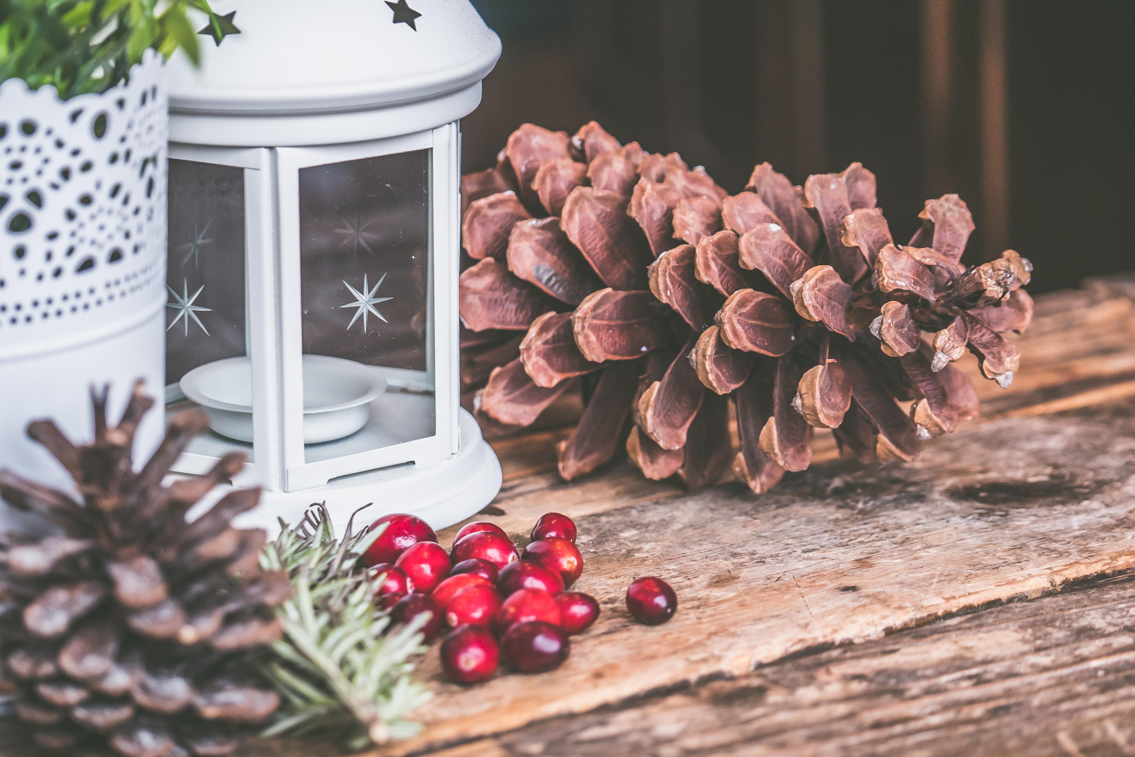 Brown pinecone beside candle lantern photo