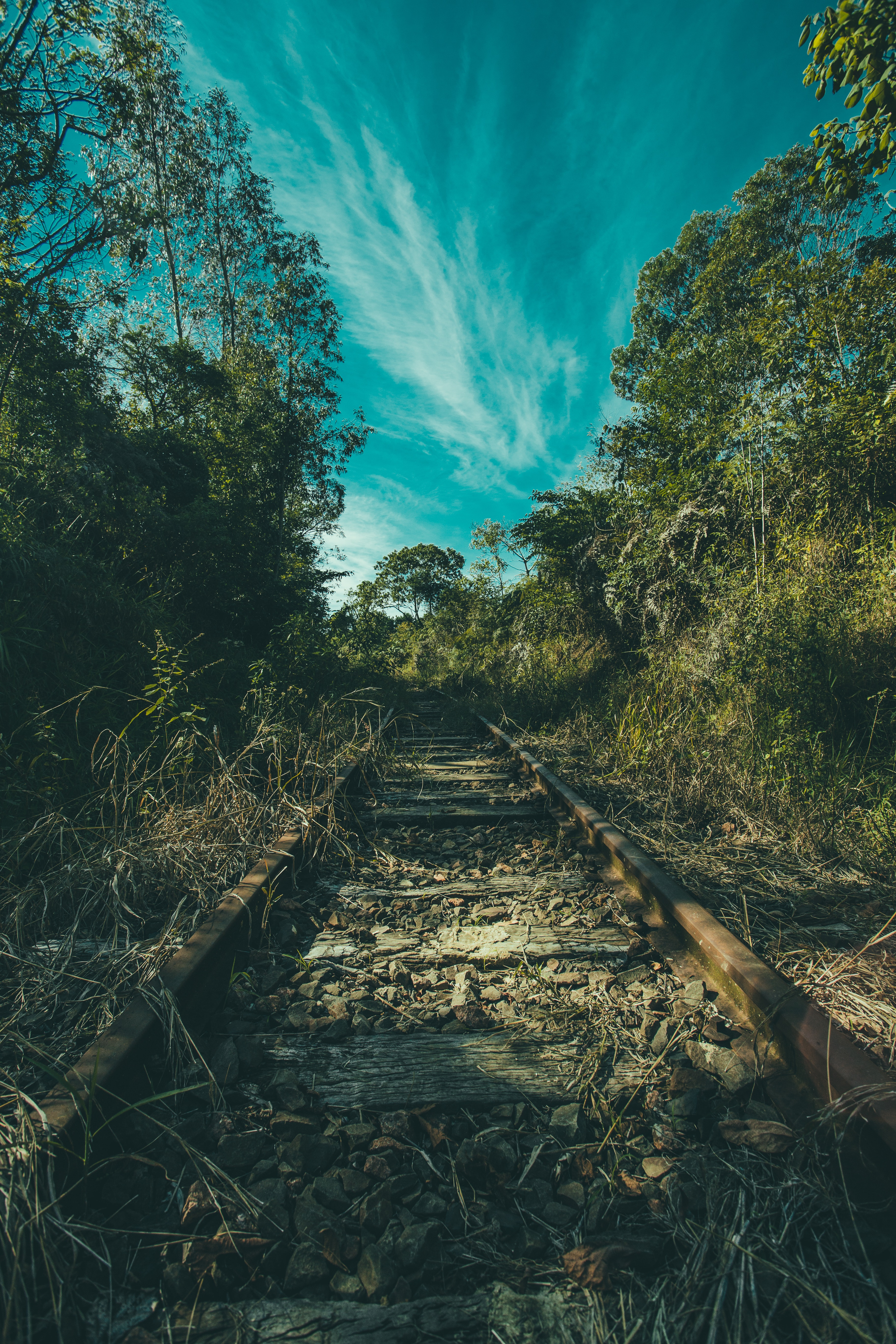 Brown Rail Way Near Green Trees Under Cloudy Blue Sky at Daytime, Sky, Trees, Rocks, Railroad, HQ Photo