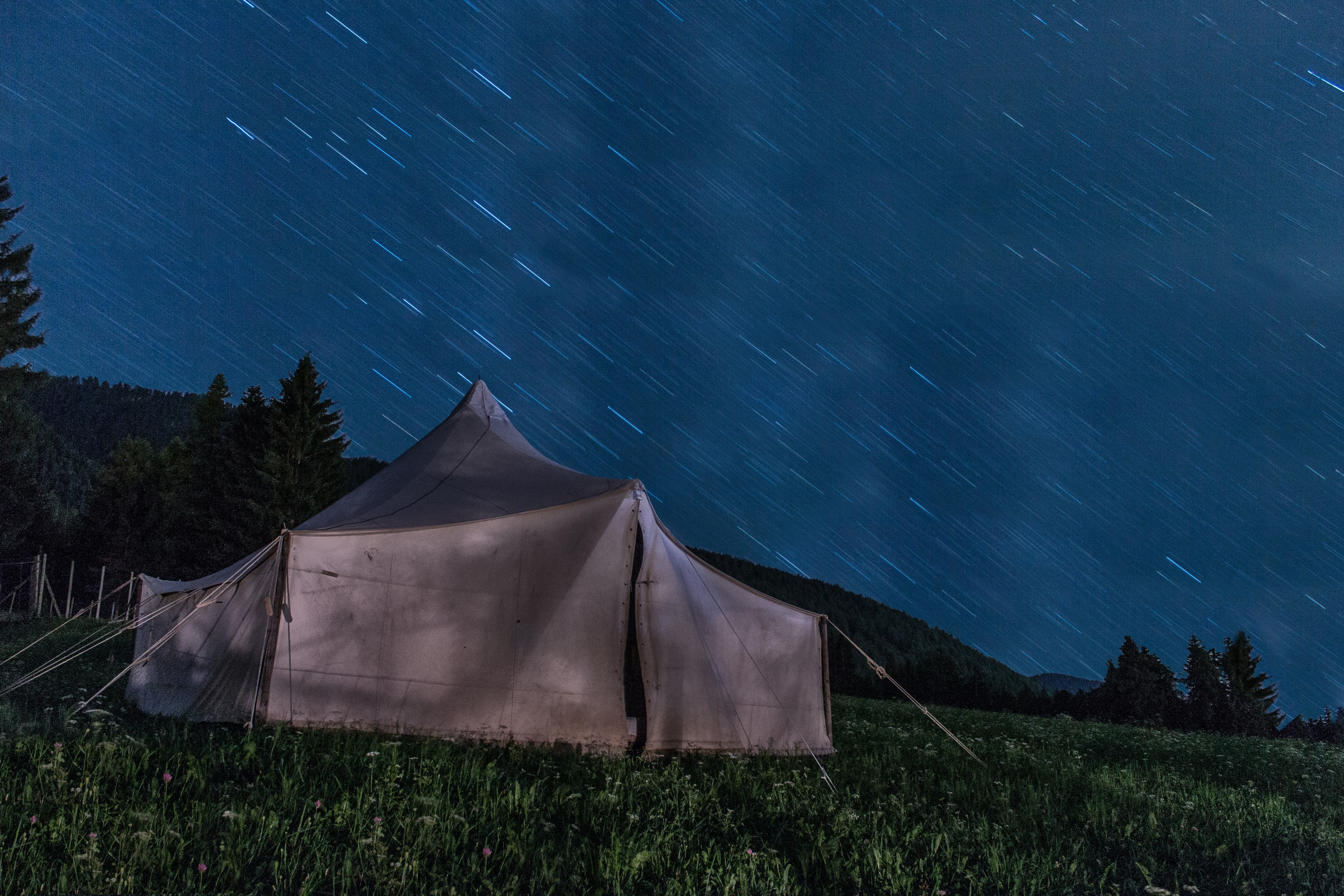 Brown tent on green grass during night time photo