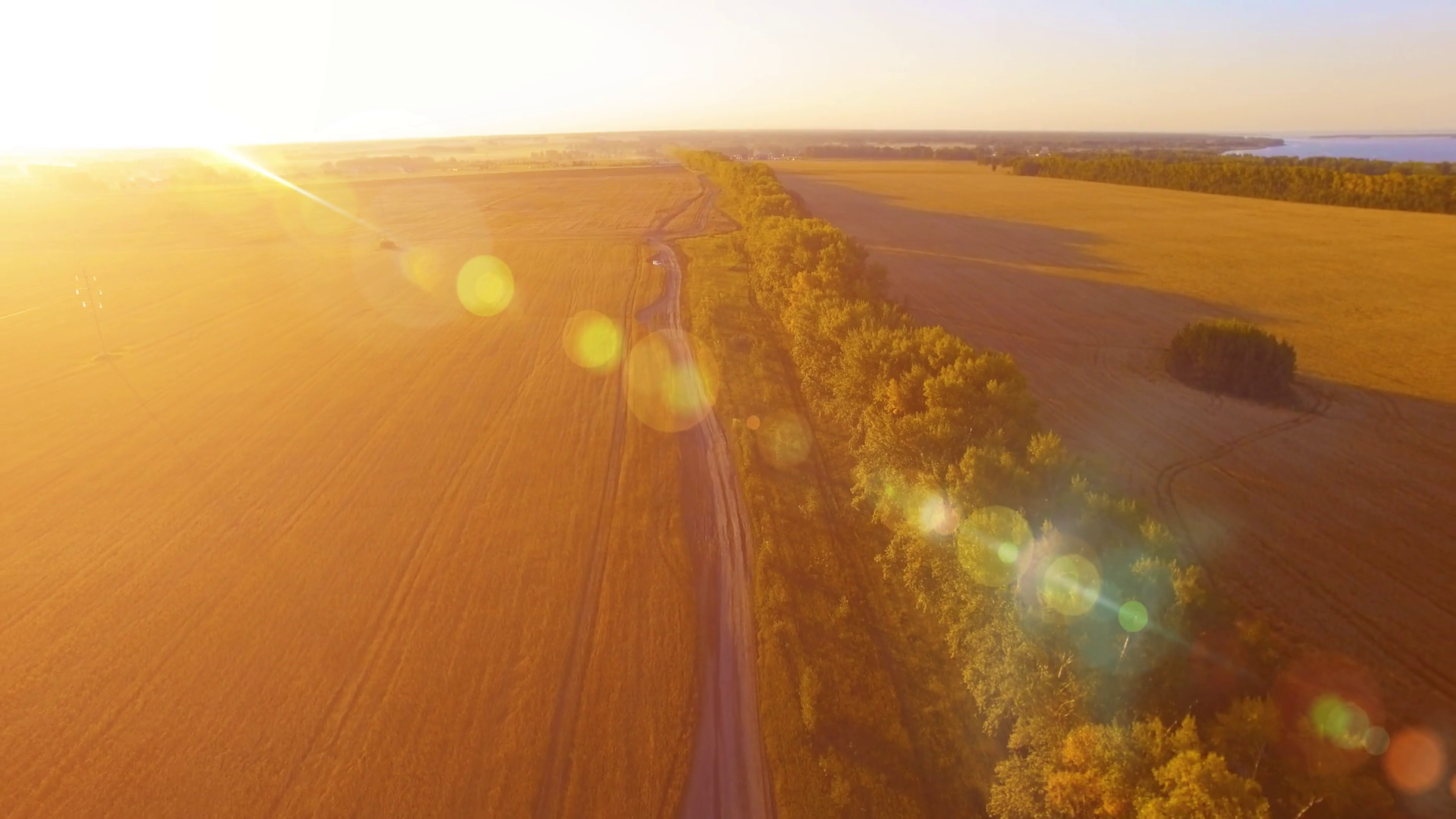 UHD 4K aerial view. Low flight over tree line and yellow wheat rural ...