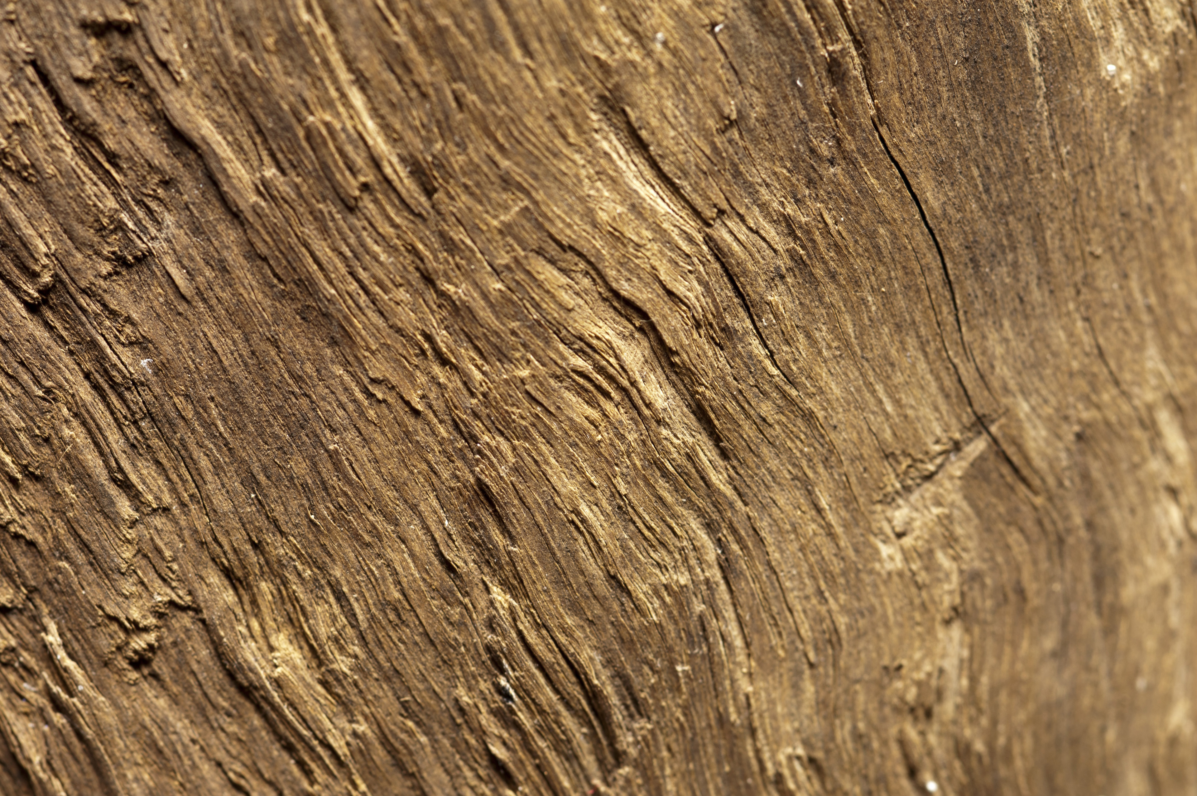 Image of Brown irregular rough wooden surface, close-up | Freebie ...
