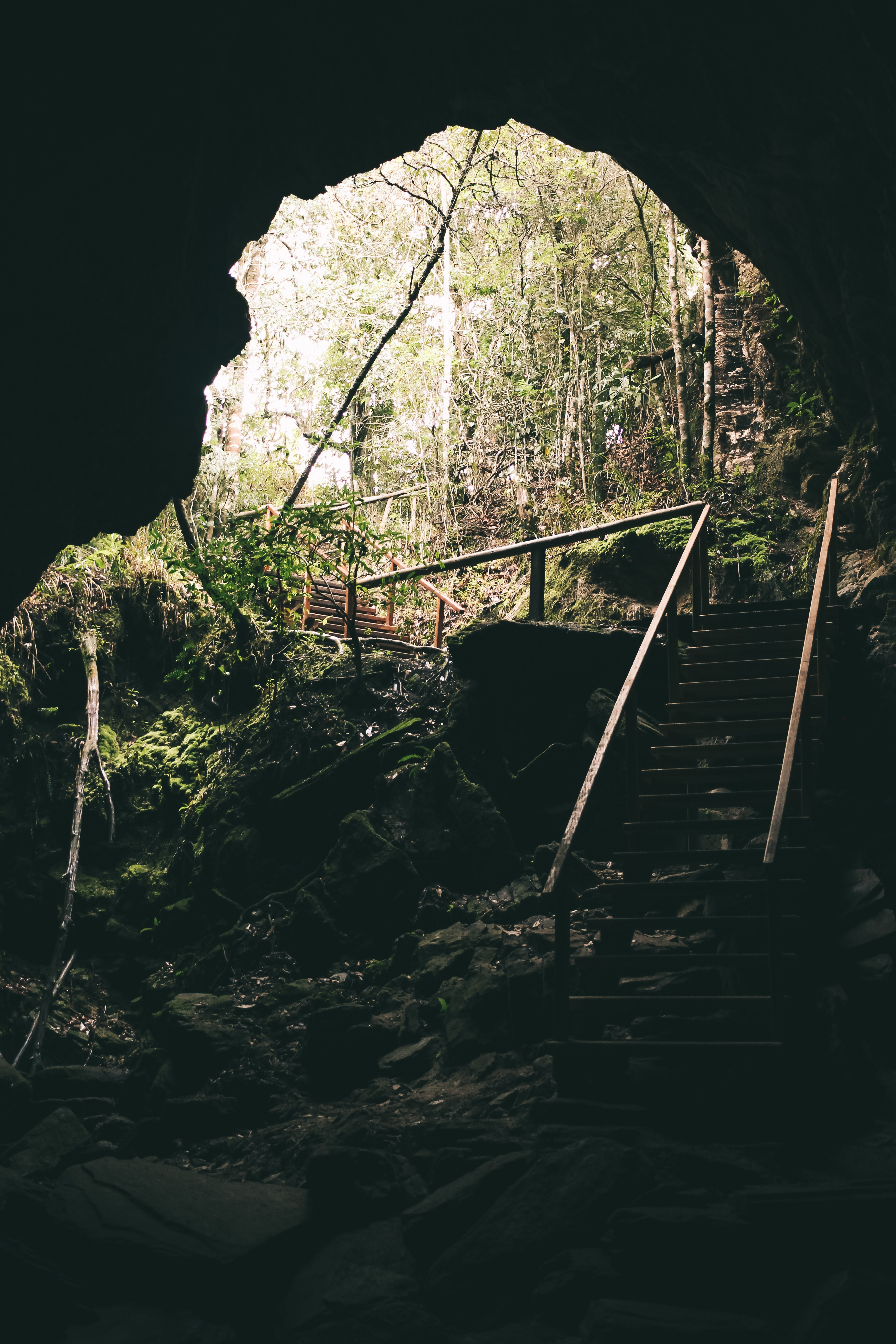 Brown Wooden Stairs, Cave, Outdoors, Trees, Stones, HQ Photo