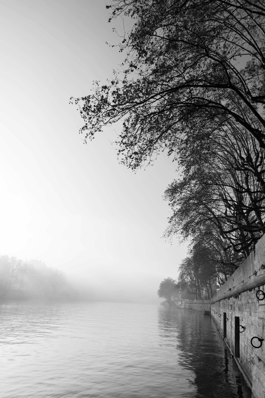Brume sur la Saone a Lyon.jpg, Blackandwhite, B&w, Eau, Monochrome, HQ Photo