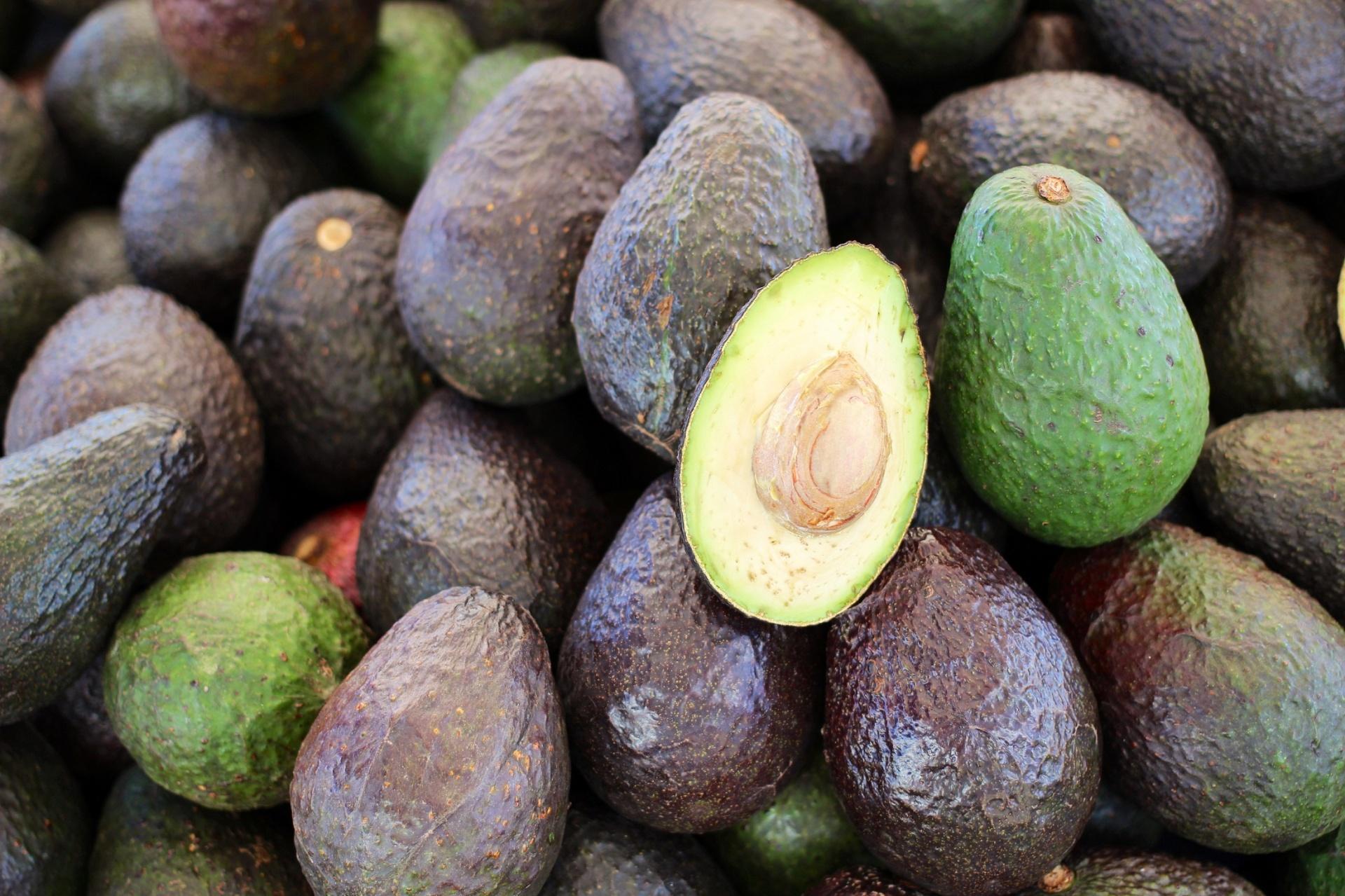 Fresh Avocados Free Stock Photo - Public Domain Pictures