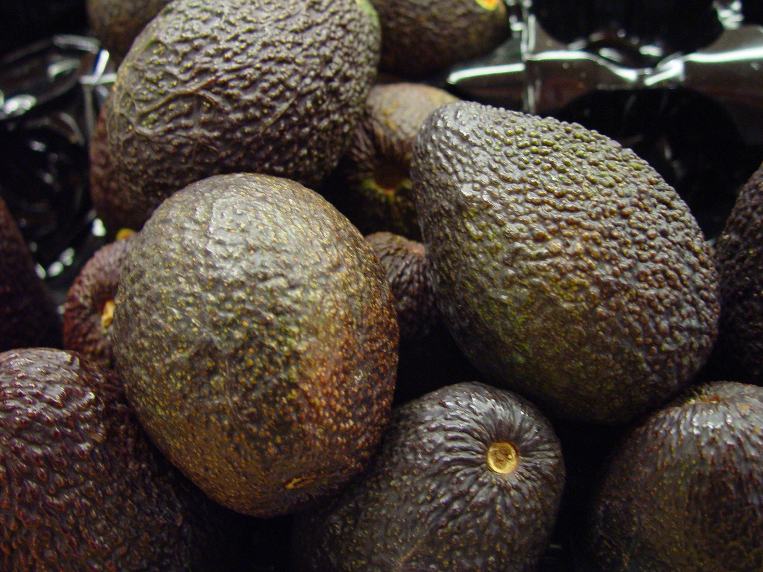 Bunch of avocados photo