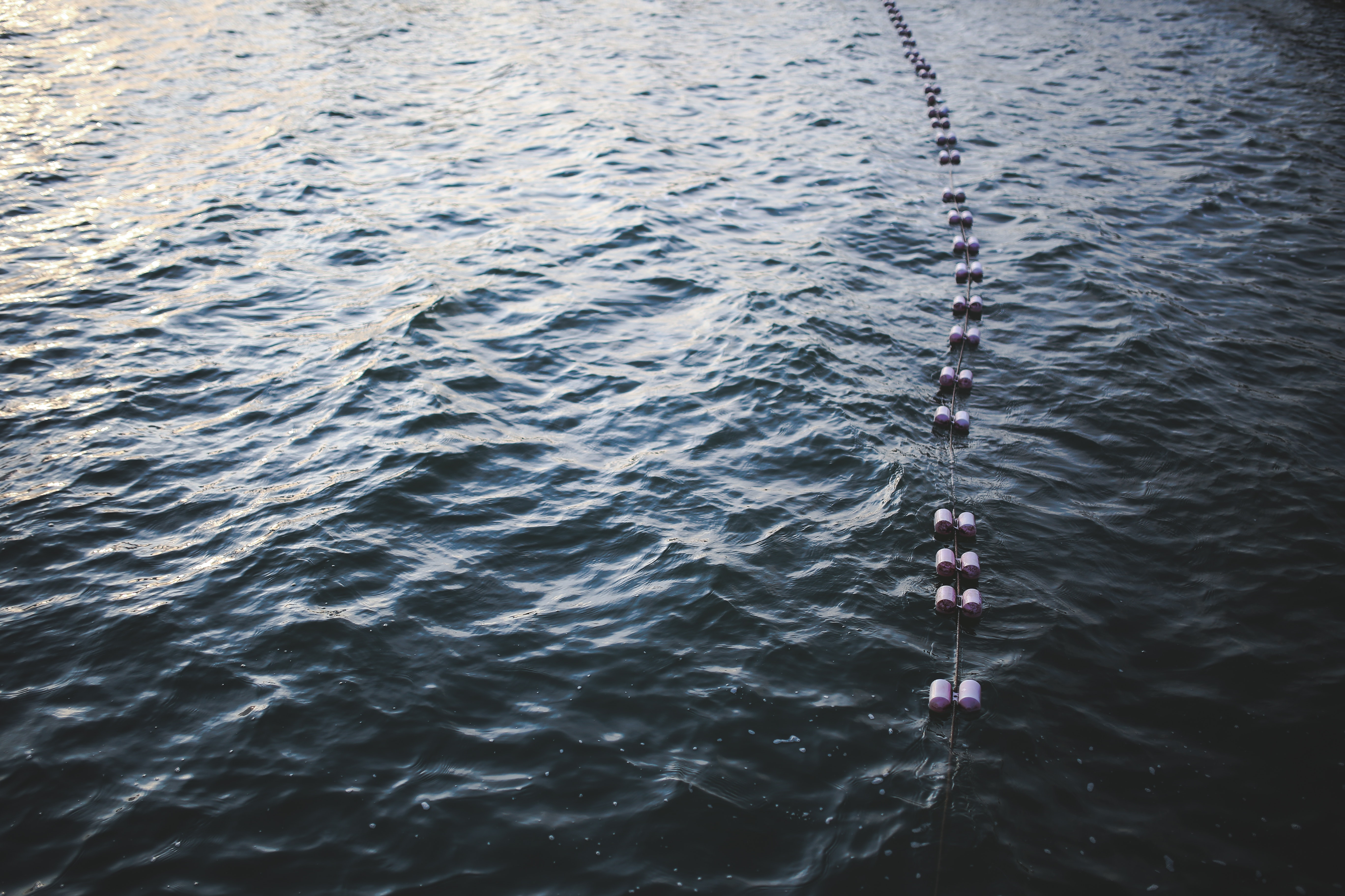 Buoys floating on top of the water photo
