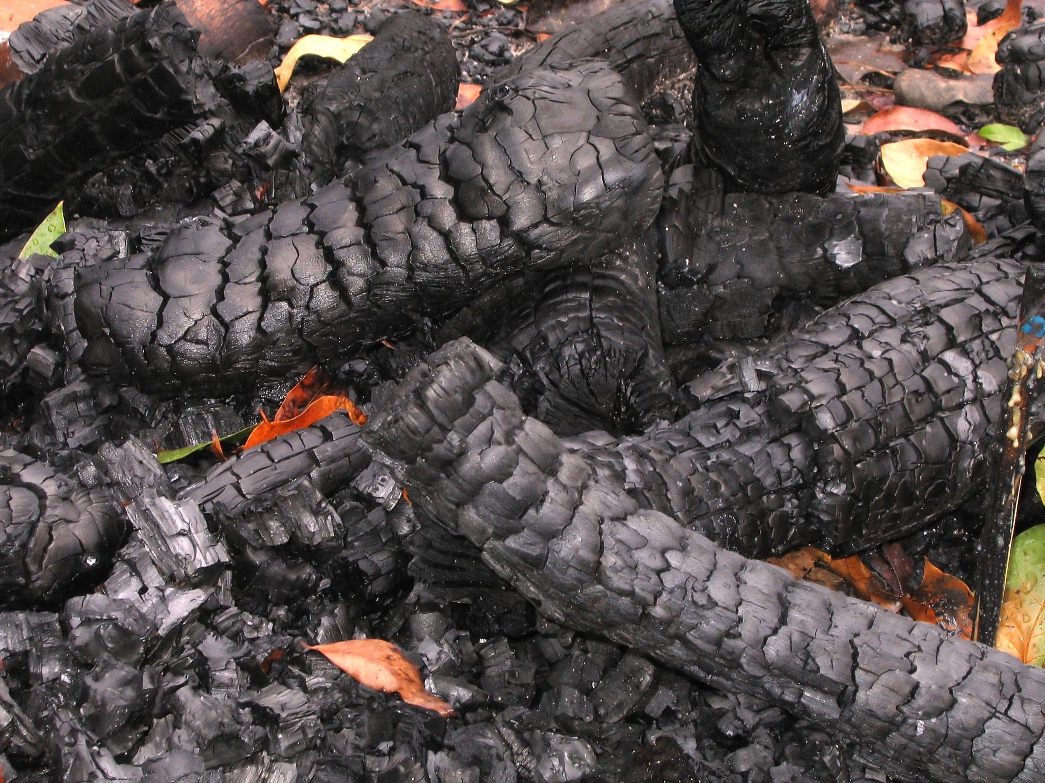 Burned Logs, Hot, Ignite, Heat, Glow, HQ Photo