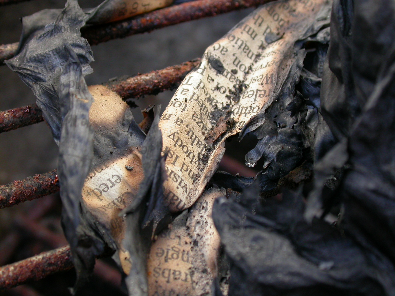 Burned Paper Texture, Text, Texture, Rust, Metal, HQ Photo