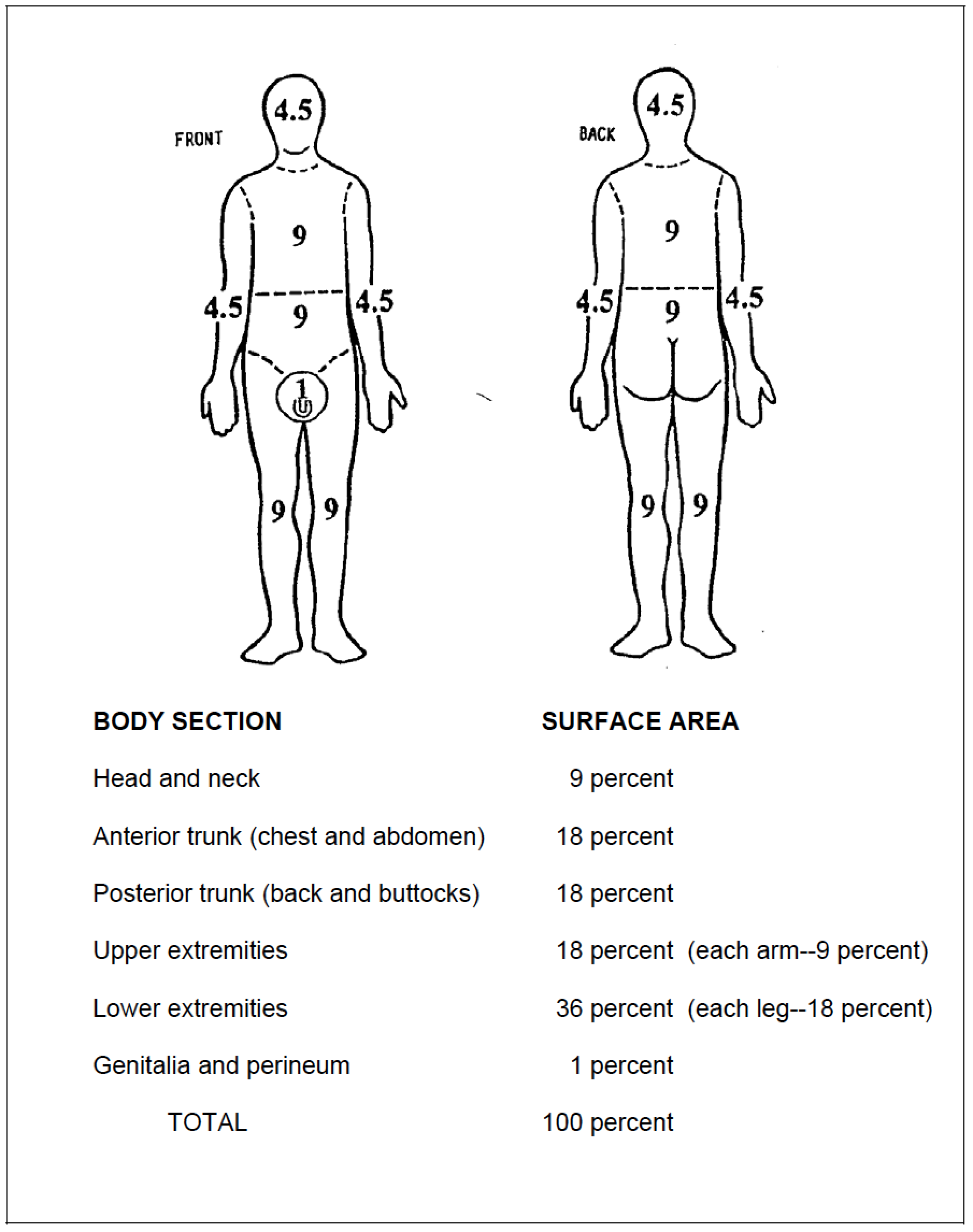 6-09. ESTIMATE THE PERCENT OF BODY SURFACE AREA BURNED | Tactical ...
