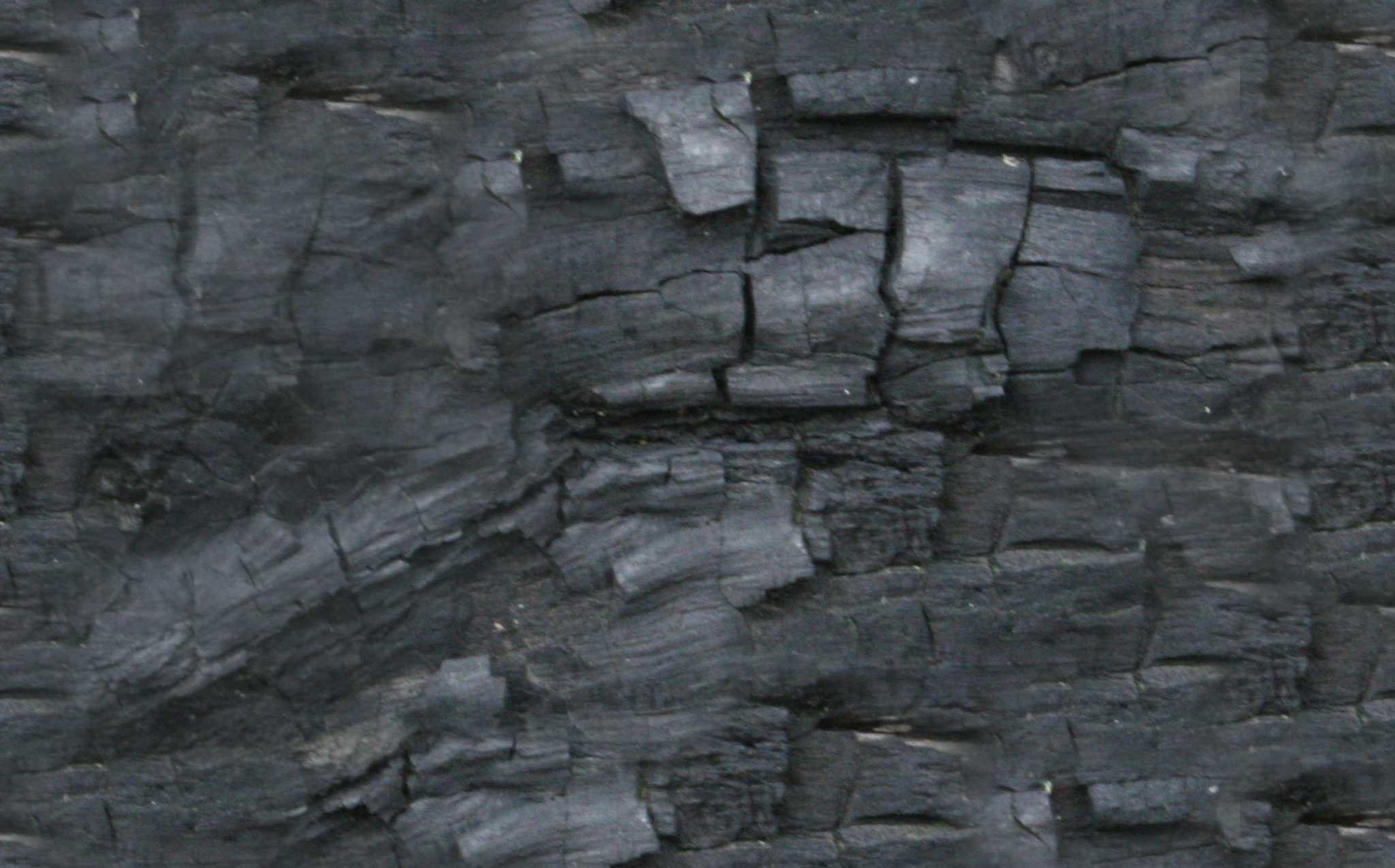 Burned Wood Texture - Seamless Texture with normalmap | OpenGameArt.org