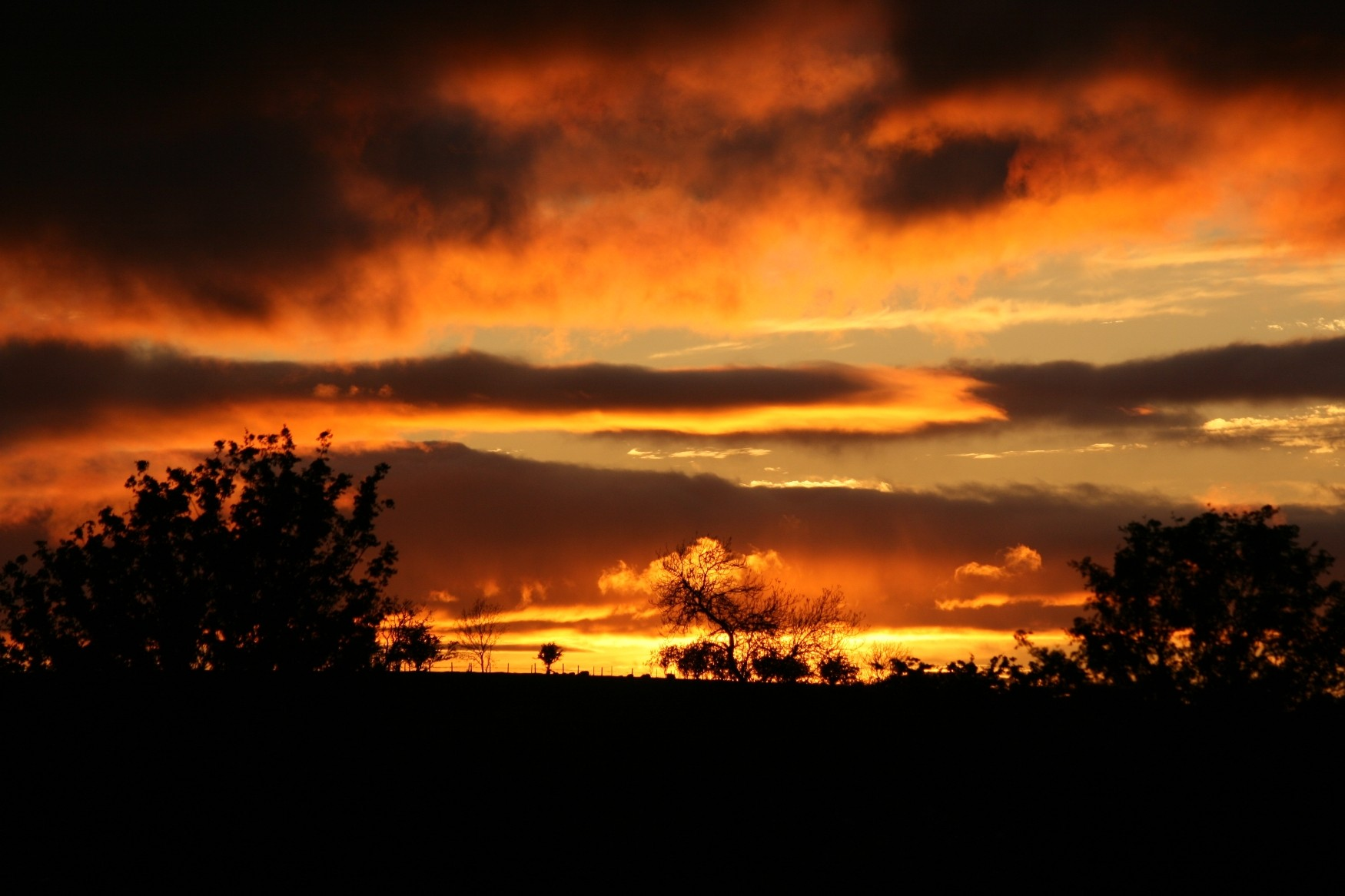 Sunset: Burning Skies Sunset Silhouette Clouds Sky Picture Sunrise ...