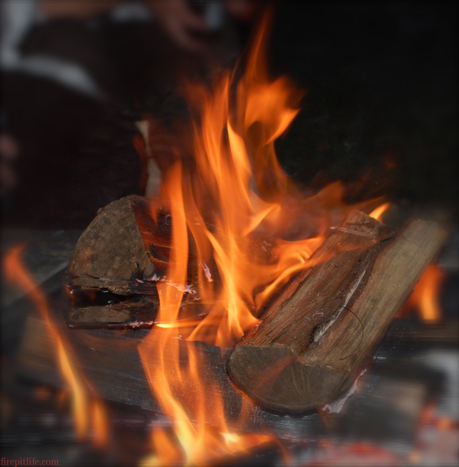 Everything You Need To Know About Burning Wood - Fire Pit Wood 101 ...