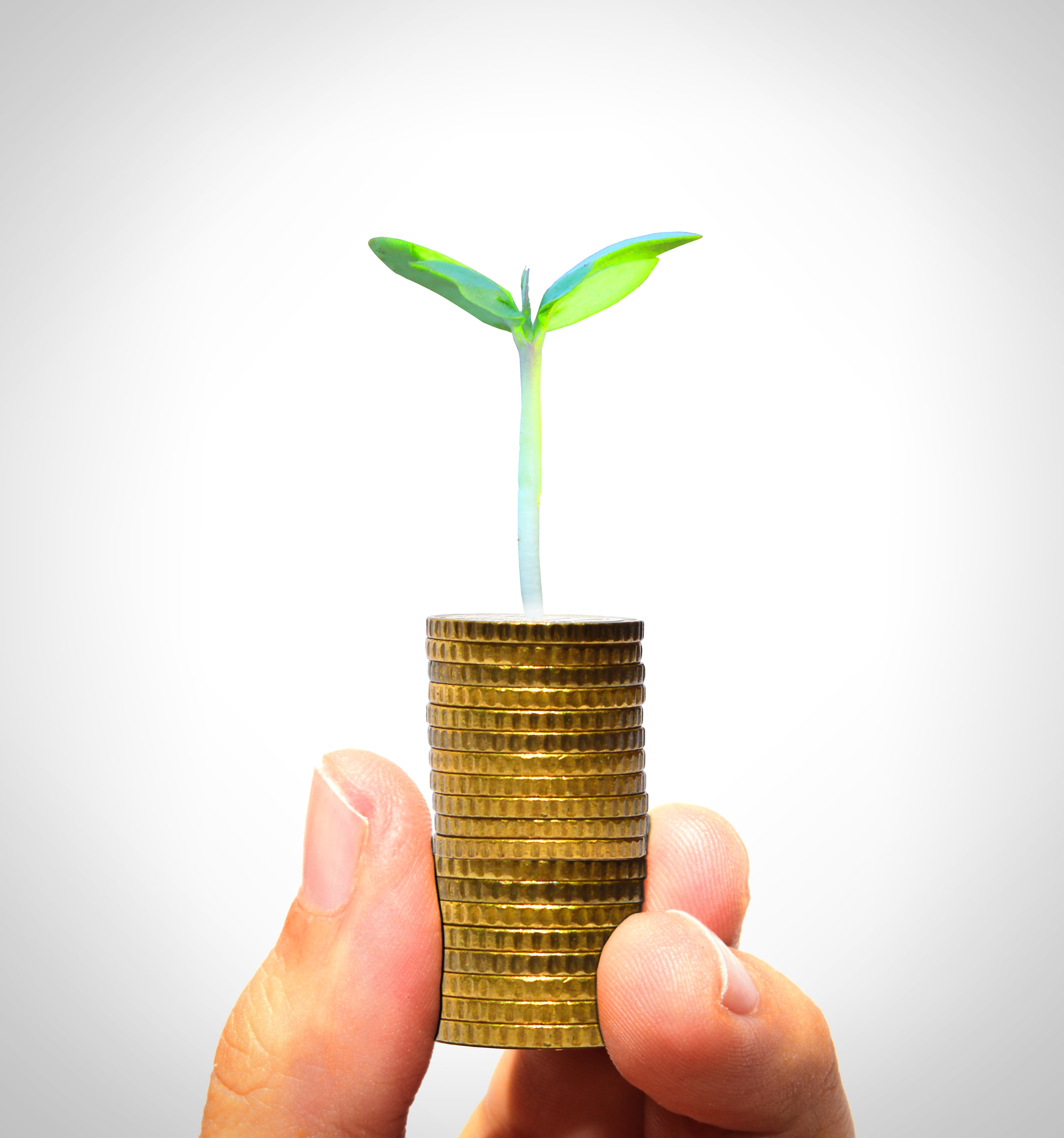 Businessman holding plant sprouting from a handful of golden coins, Metaphor, Plant, Plan, Piles, HQ Photo
