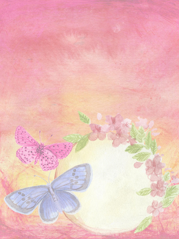 Butterflies in a garden photo