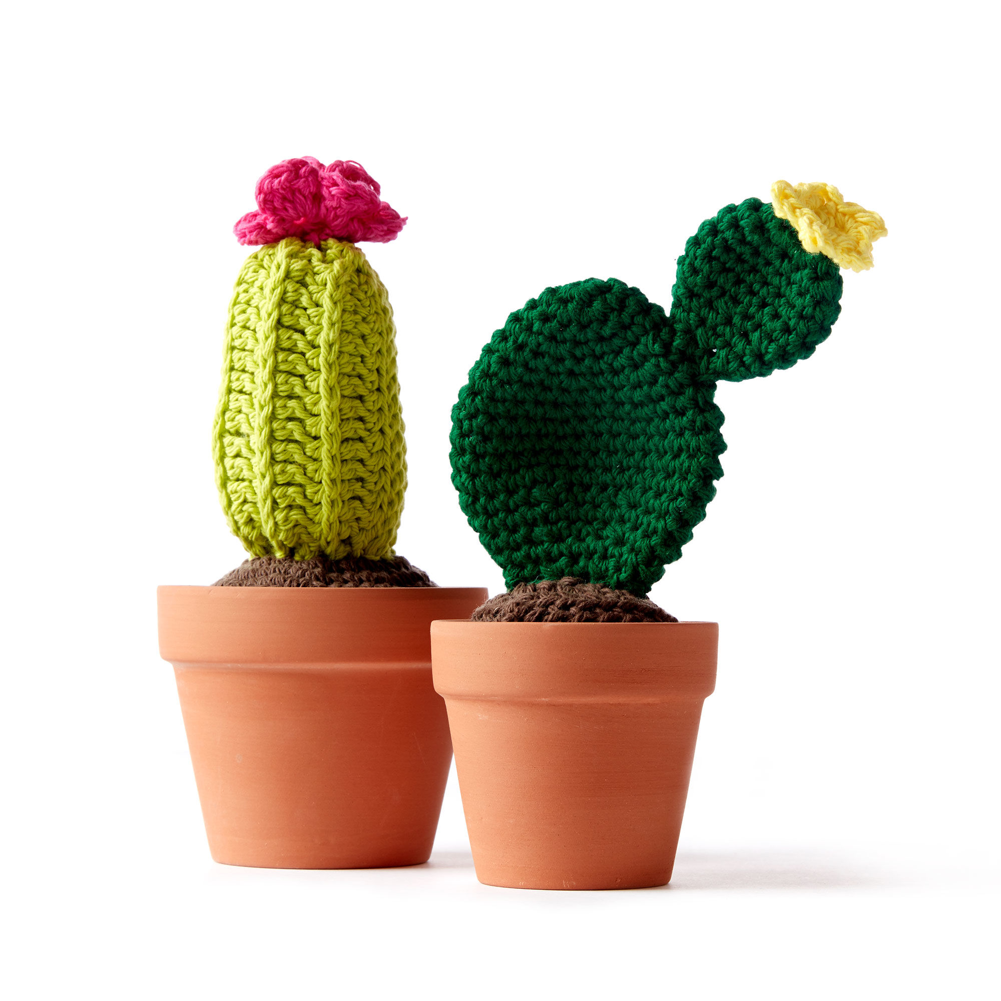 Lily Sugar'n Cream Crochet Cacti, Version 1 | Yarnspirations