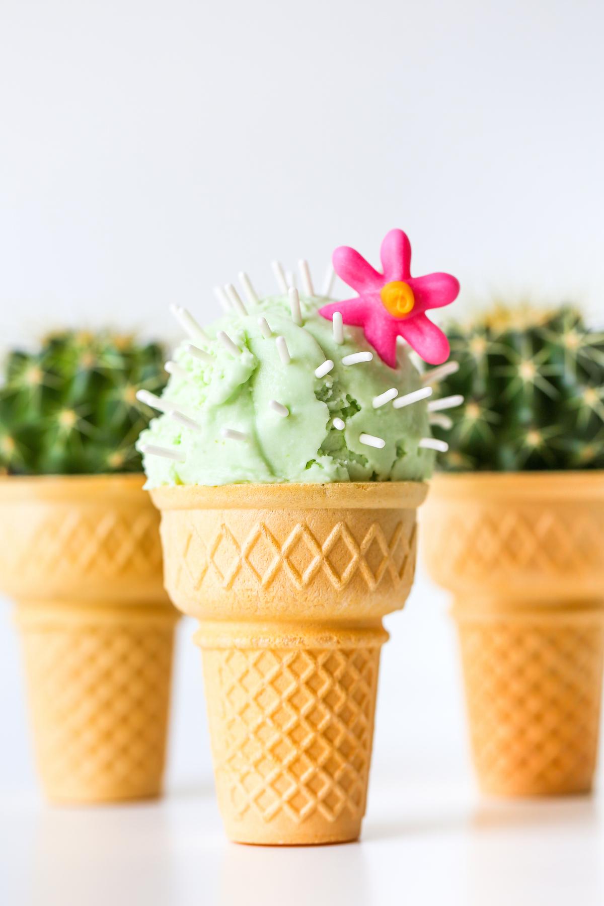 Cactus Ice Cream Cones - Studio DIY