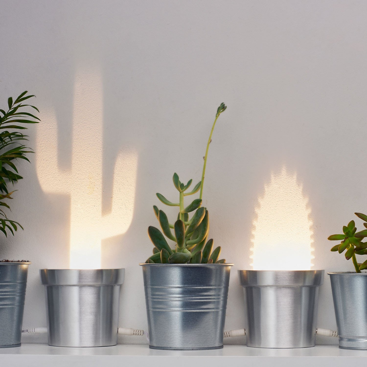 A Set of Three Cactus Lamps in Three Different Shapes Made Aluminum ...