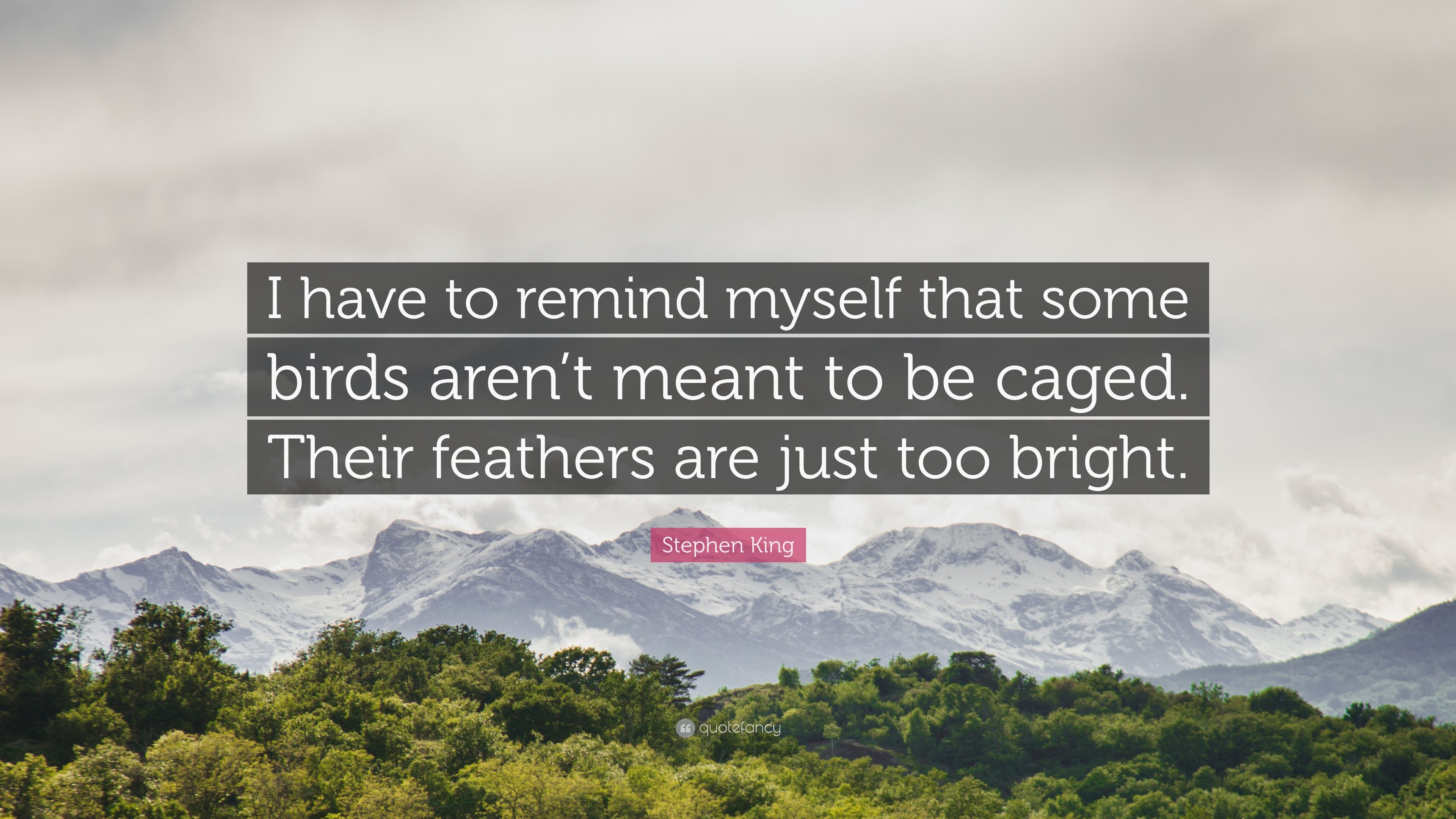 """Stephen King Quote: """"I have to remind myself that some birds aren't ..."""