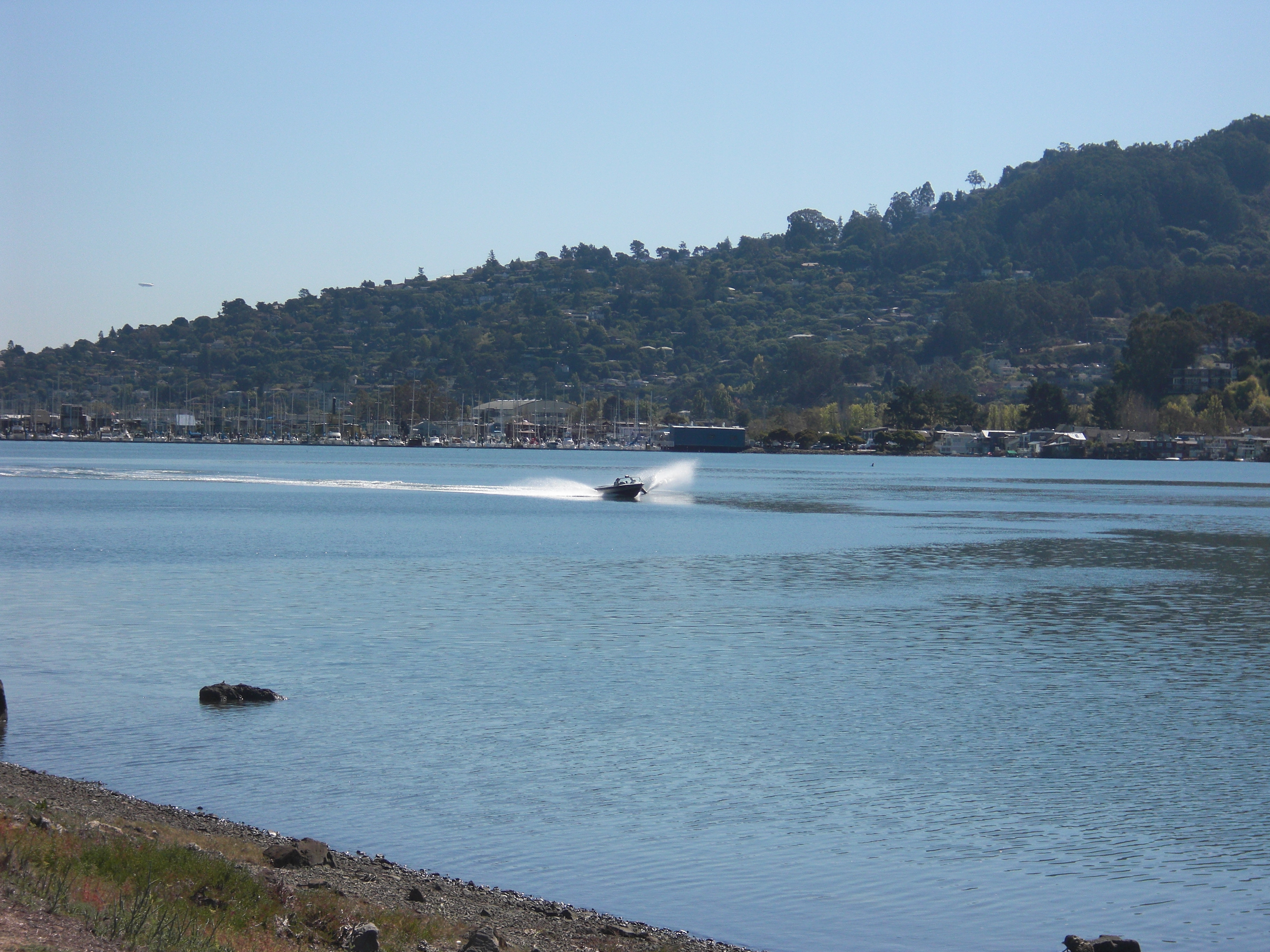 California, Water, Sports, Waterskiing, Watersports, HQ Photo