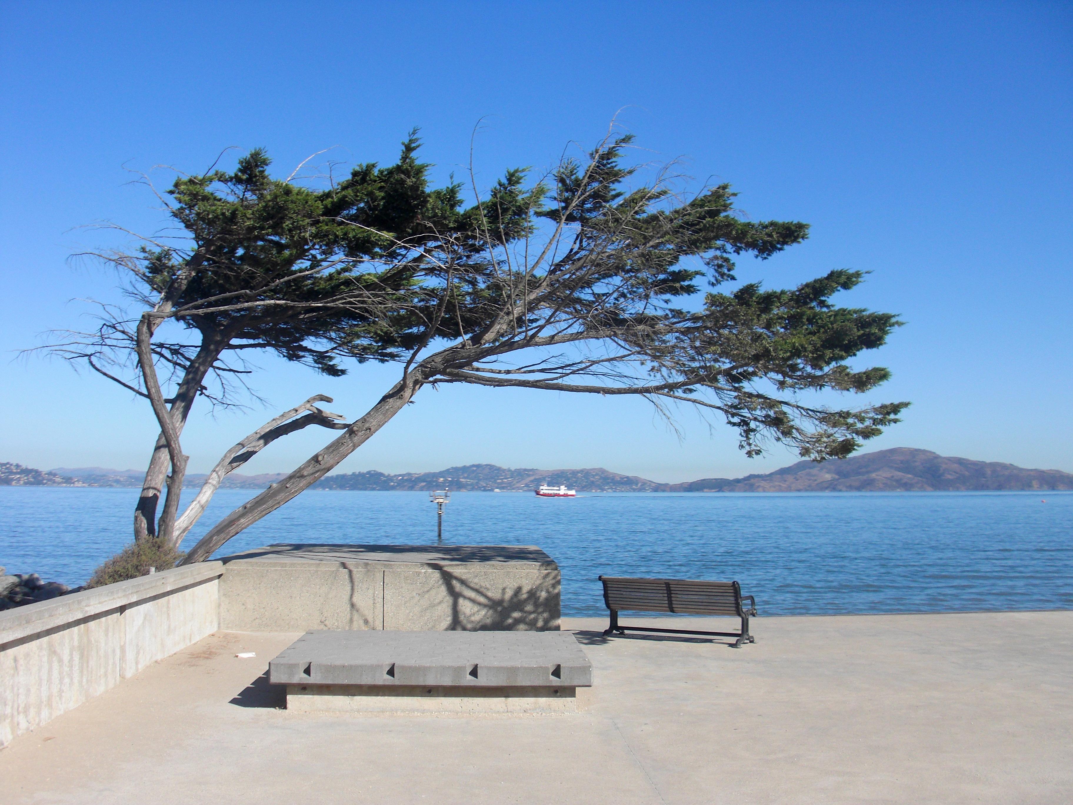 California, Absence, Ocean, Waiting, Wait, HQ Photo