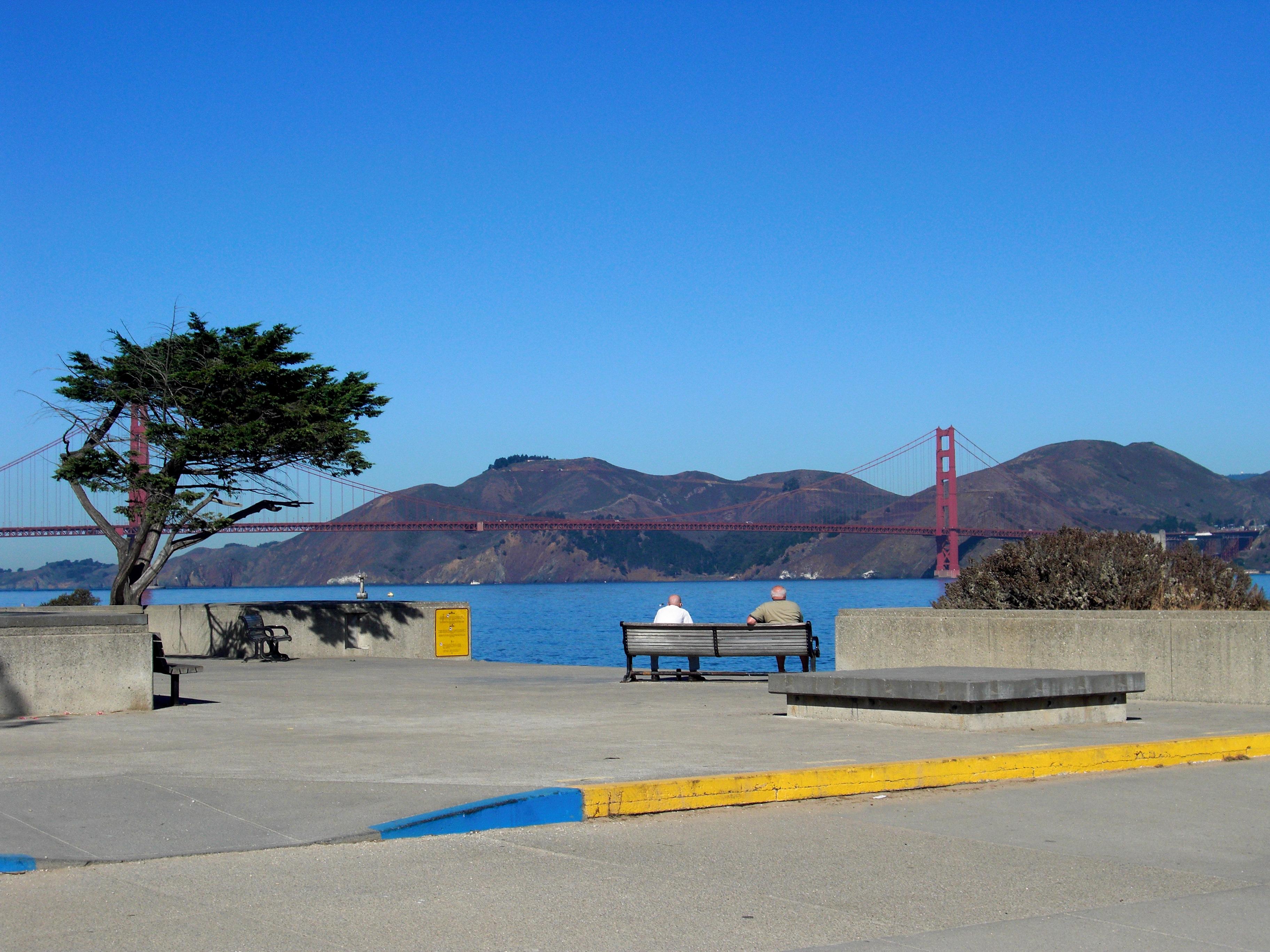 California, Bay, Landmarks, View, Tree, HQ Photo