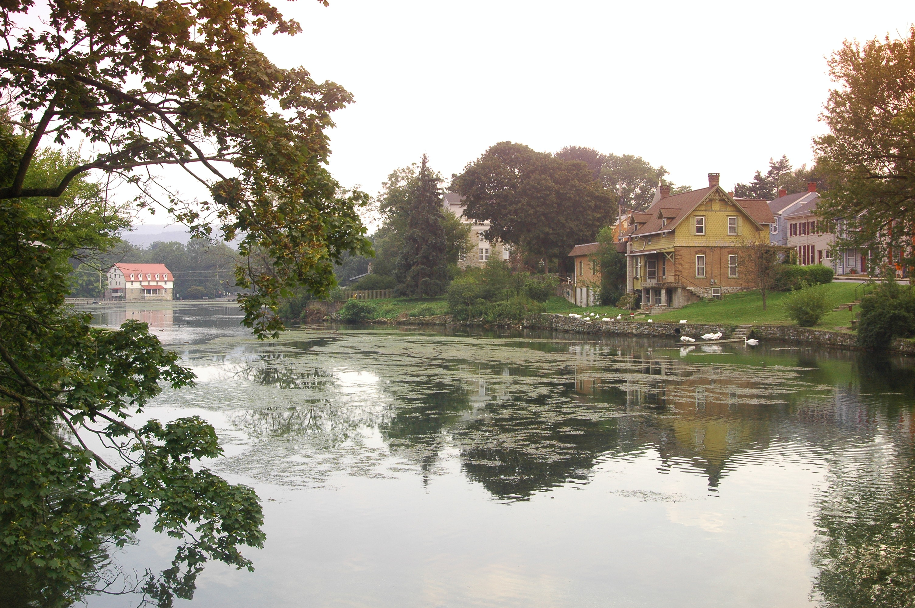 Calm pond in small town photo