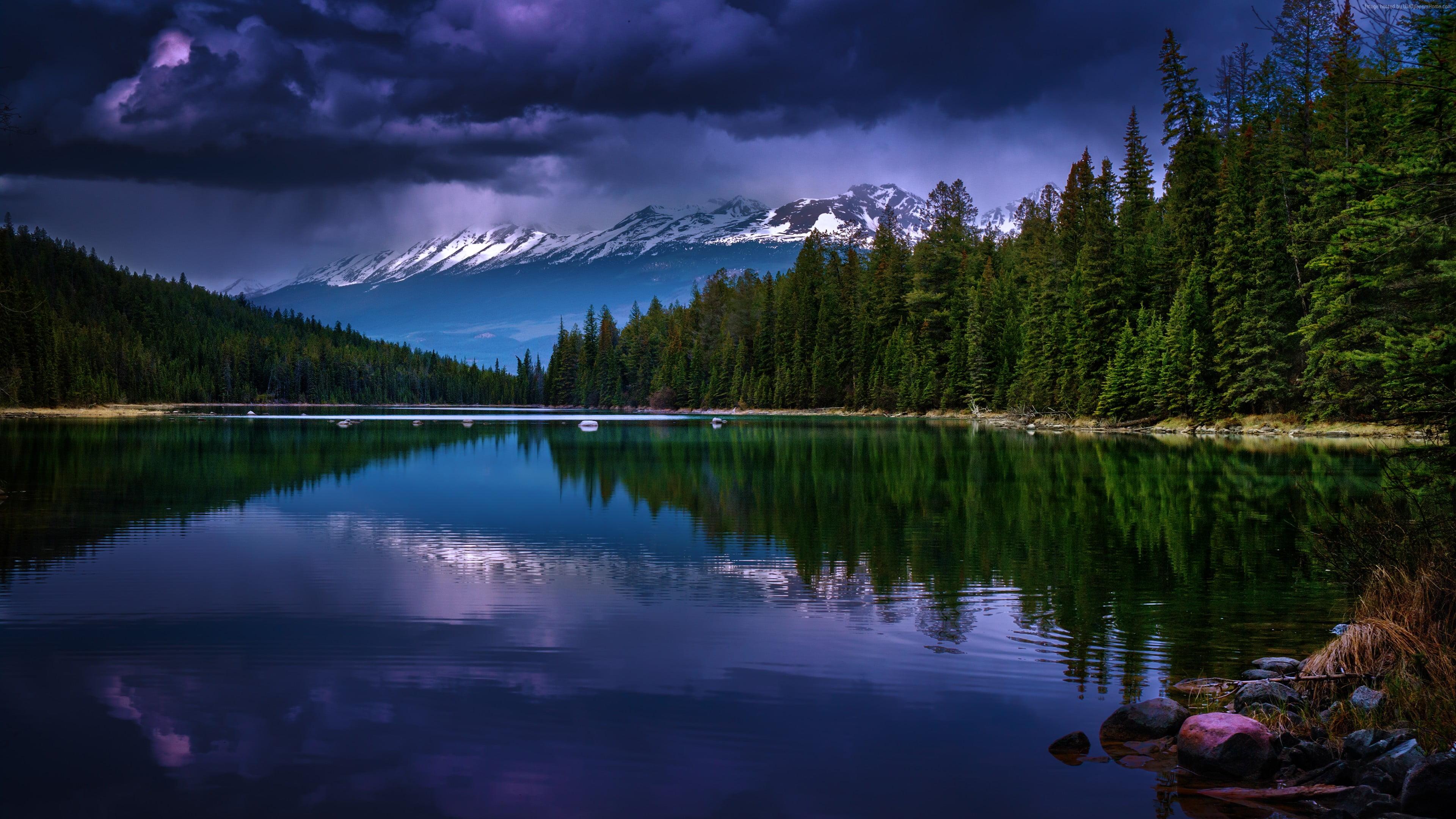 Calm lake near forest HD wallpaper | Wallpaper Flare