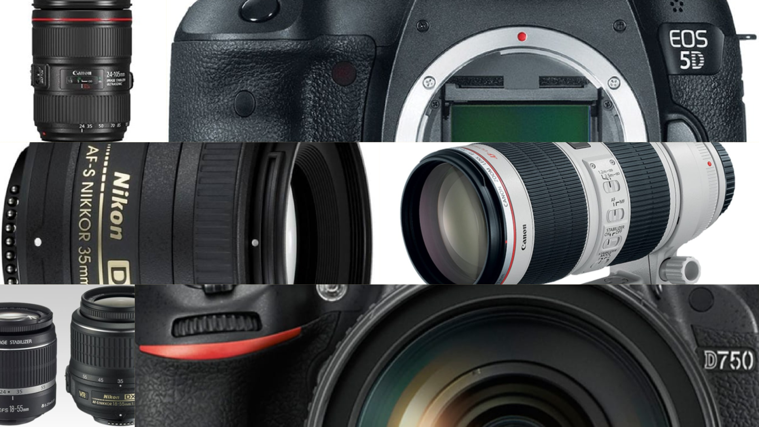 Photofocus | What Are The Most Popular Used Cameras and Lenses?